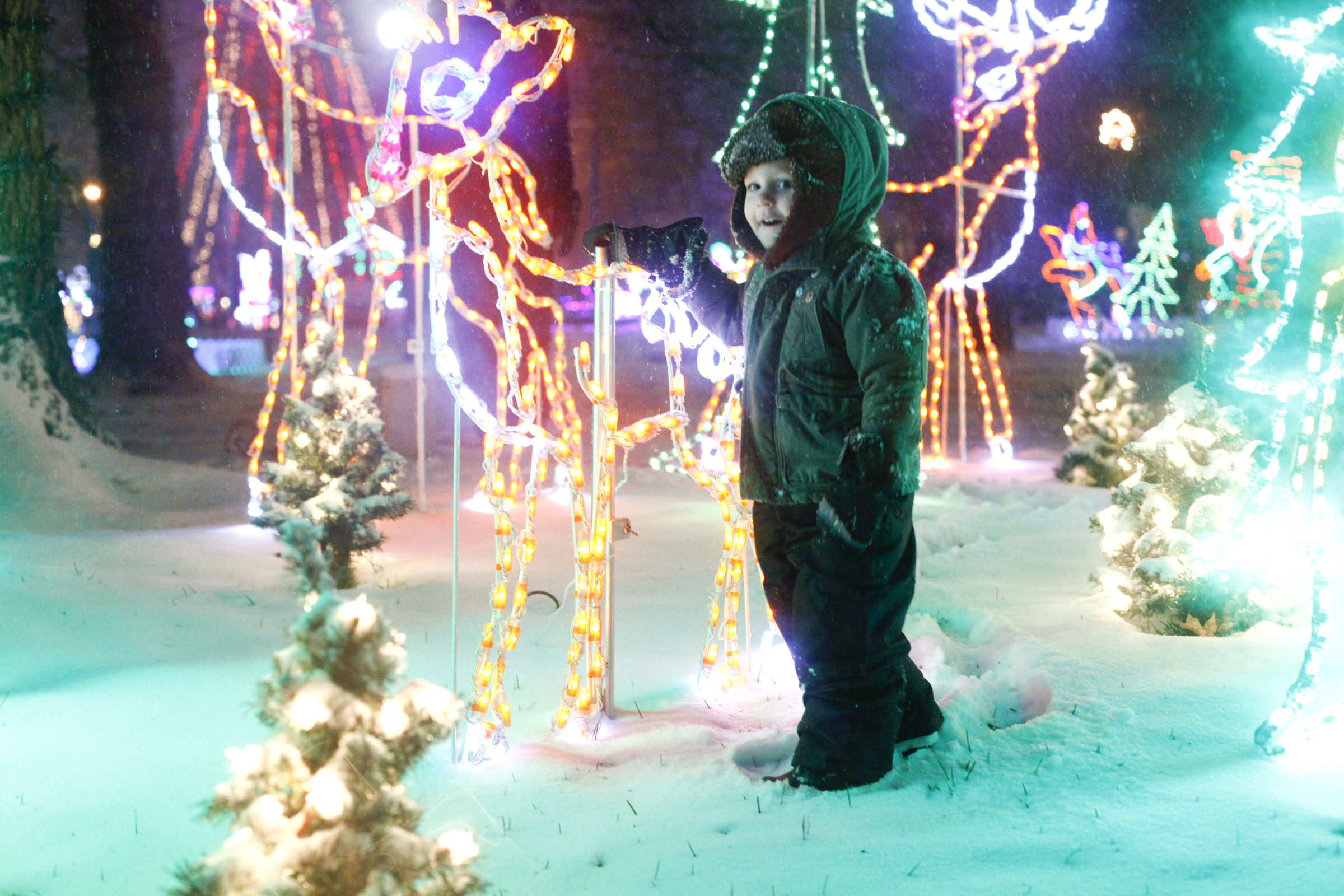 Roscoe Platts gets a close look at one of the displays at the annual Light Up La Grange.