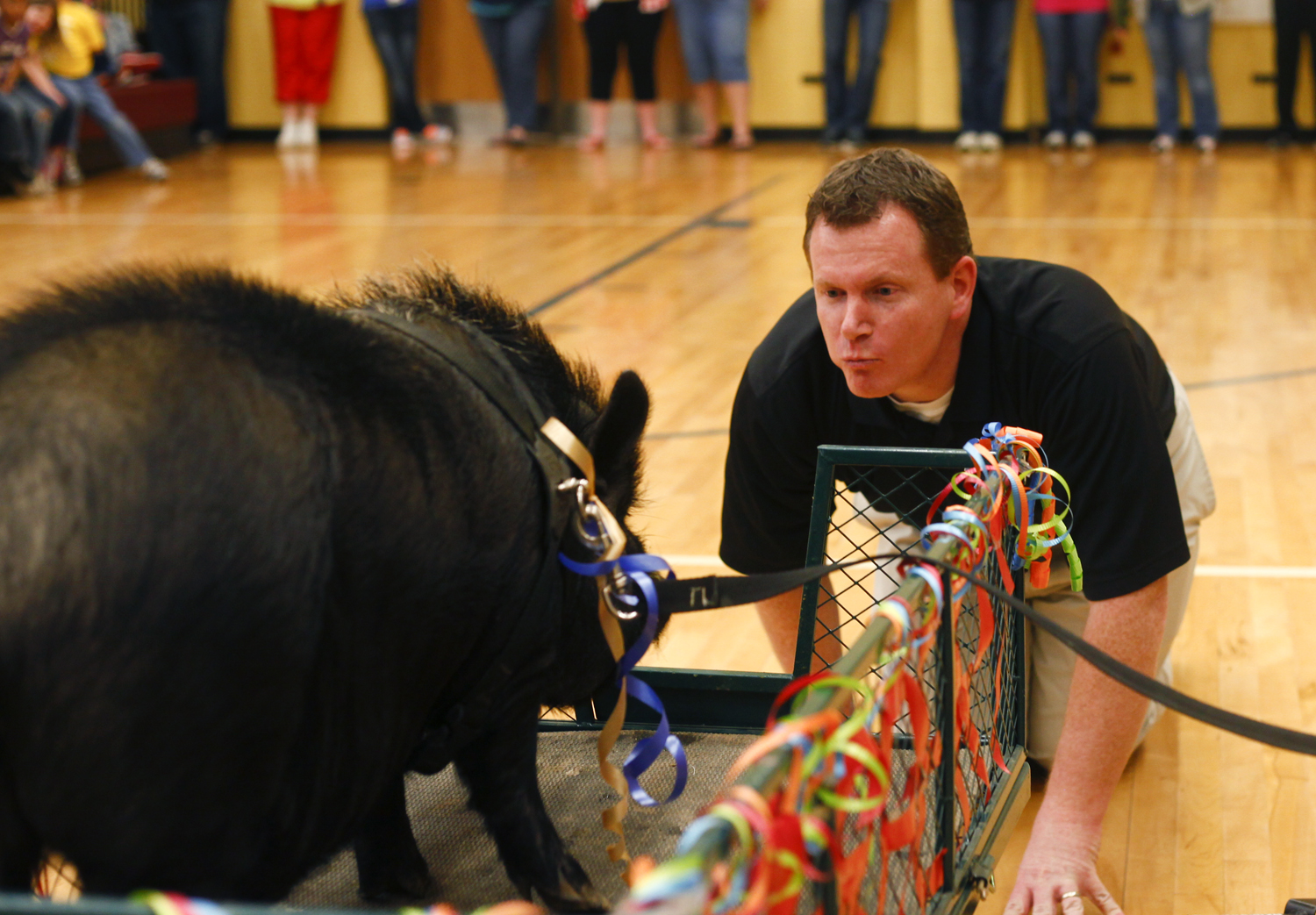 Principal Andy Moore puckers up for Herbert the pig during the schools annual Kiss the Pig fundraiser at Locust Grove Elementary. Students vote for their teachers to kiss Herbert by donating change to that teacher throughout the week and the teachers with the most money have to kiss Herbert. Money from the fundraiser will go toward expanding the playground area and adding a kickball field.