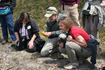 Enjoy guided field trips with botanical experts!