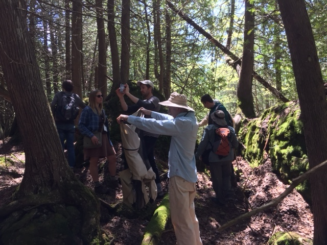 Fern field trip, led by Susan Fawcett