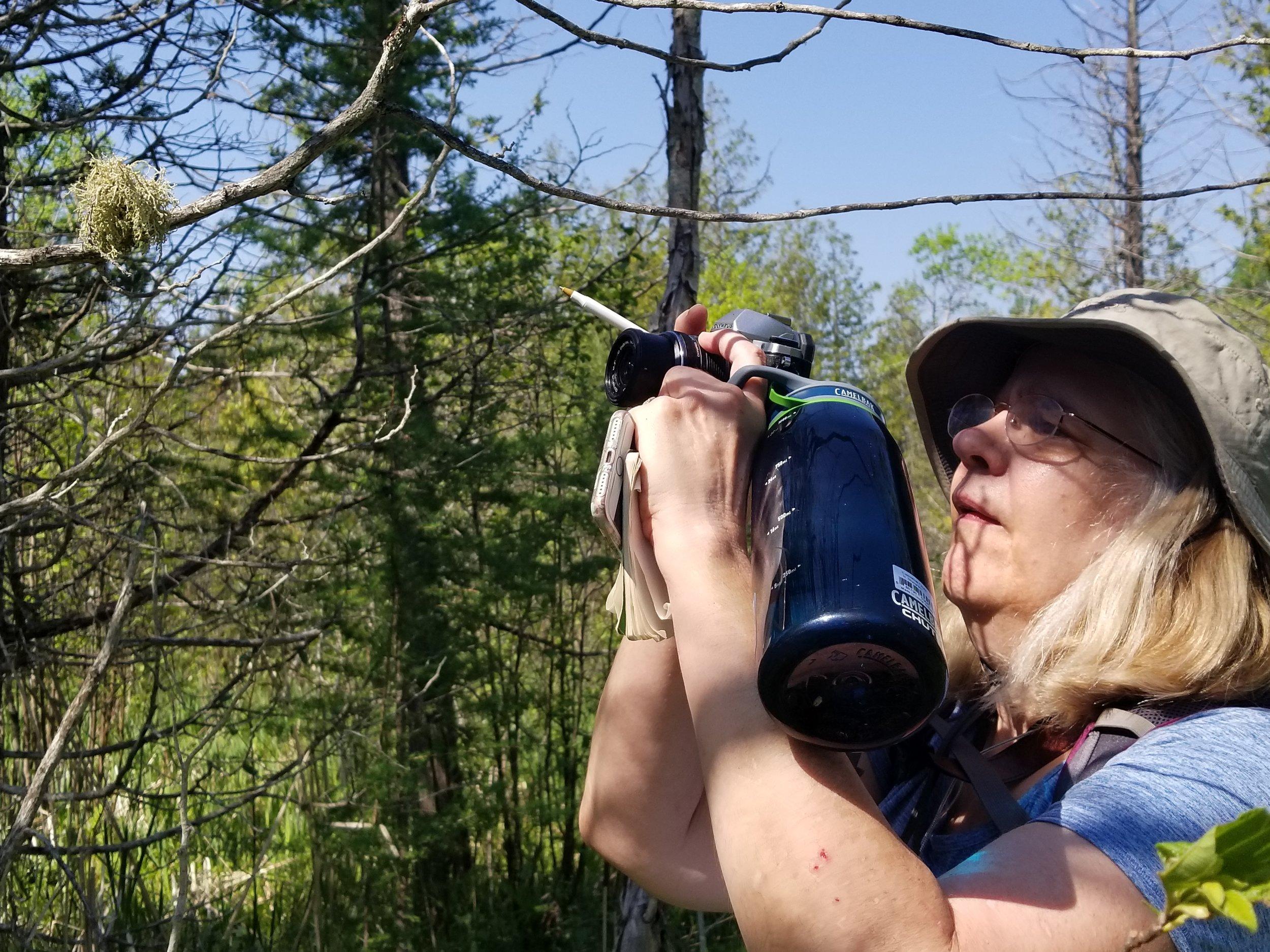Marchio Nature Preserve (100) Sheila Berg.jpg