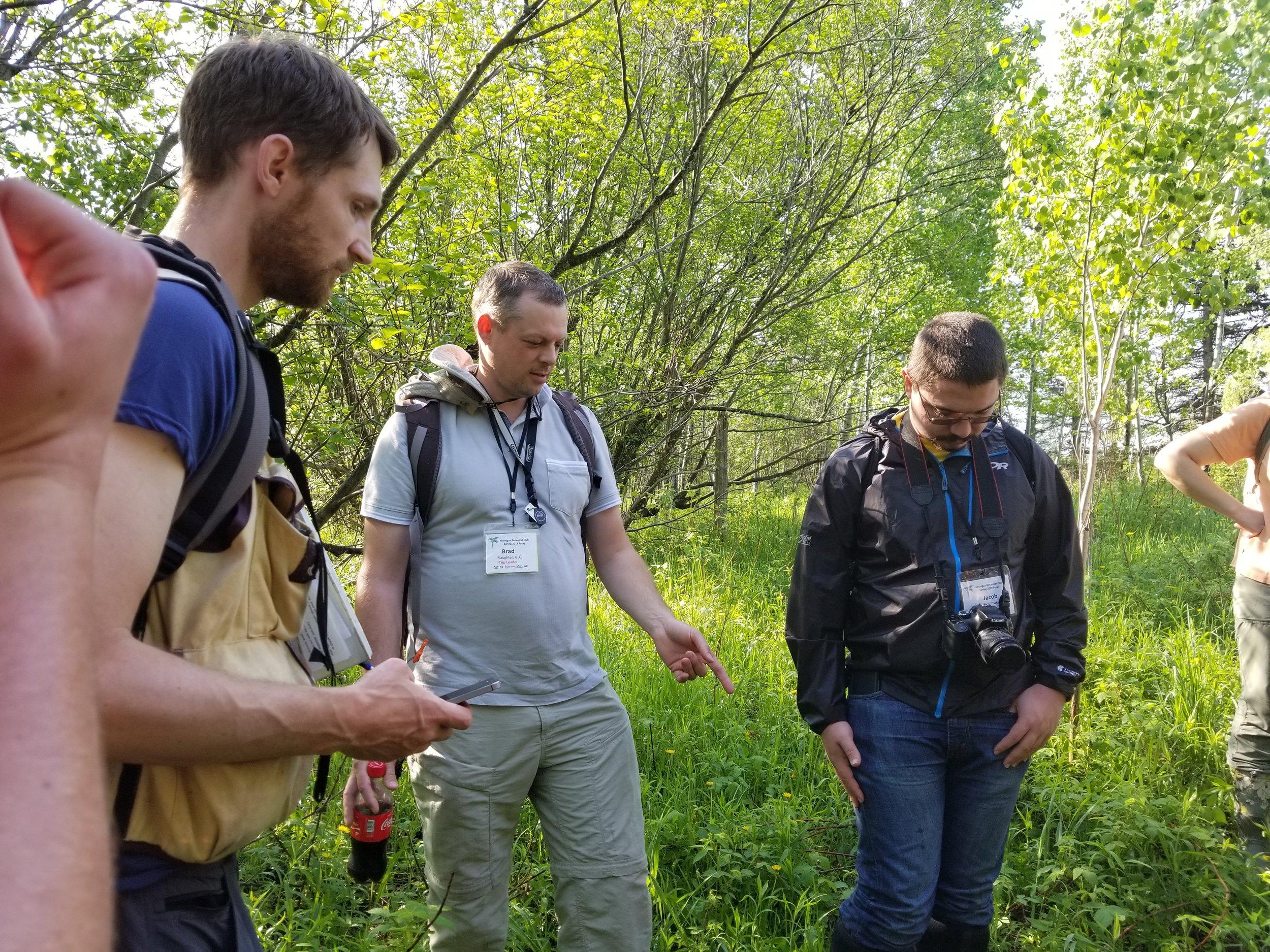 Marchio Nature Preserve (1) Derek Shiels Brad Slaughter Jacob Yesh-Brochstein.jpg