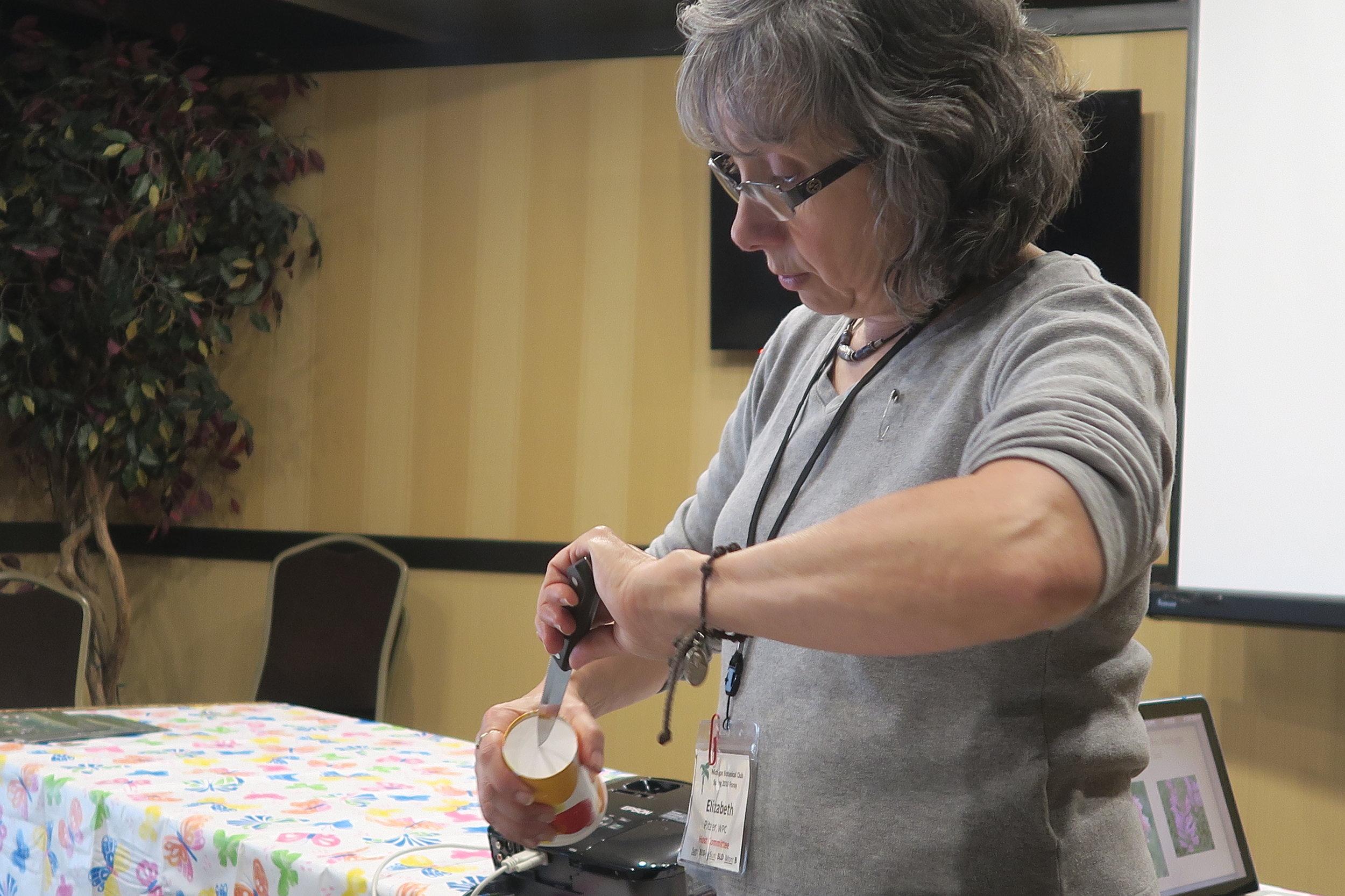 Wild Side 8 Elizabeth Pitzer potting plants.JPG