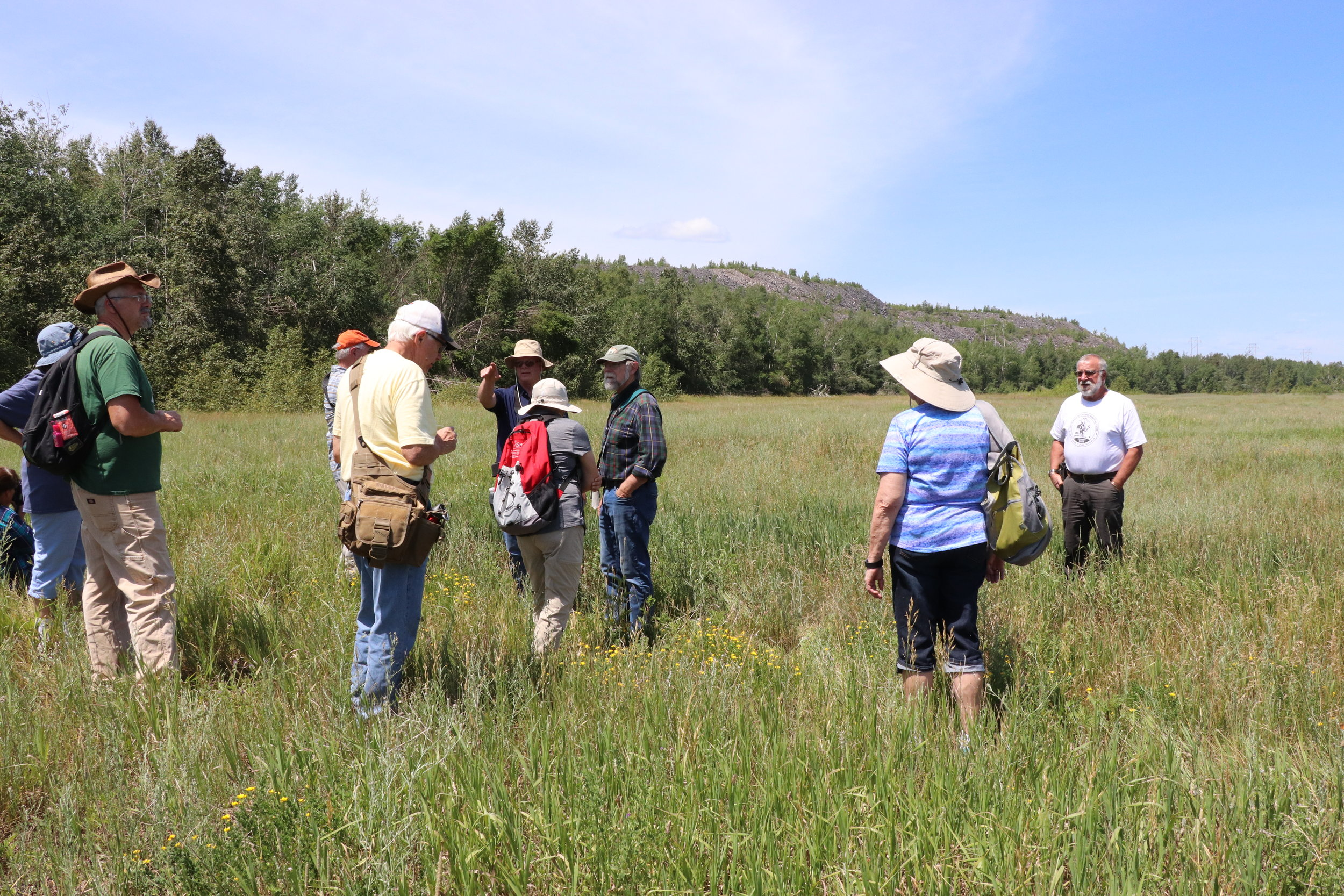 Former tailings basin converted to hay field to reduce fugitive dust issues. Plants observed included alfalfa, smooth brome grass, timothy grass, birds-foot trefoil, and spotted knapweed.