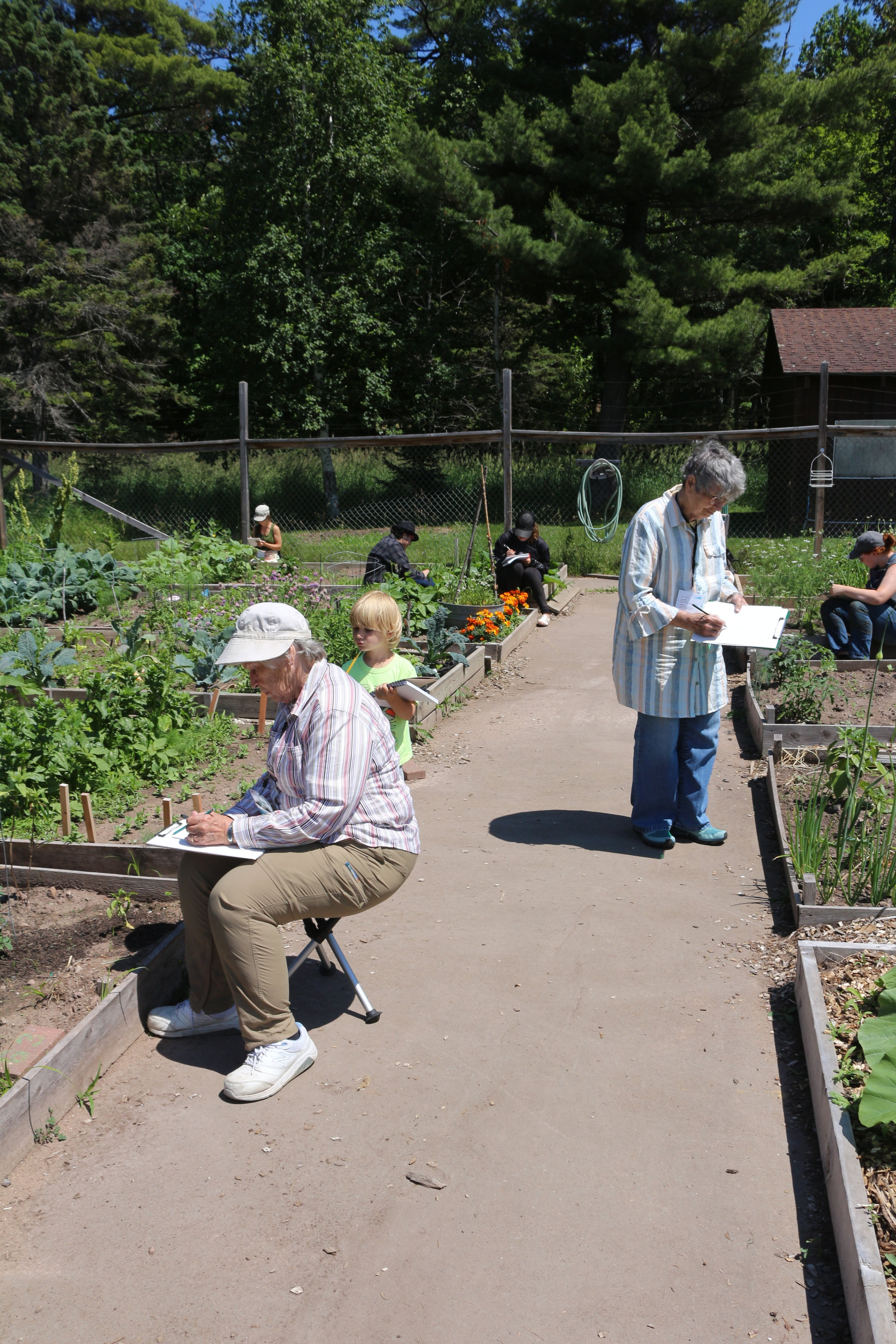Drawing in the Community Garden.