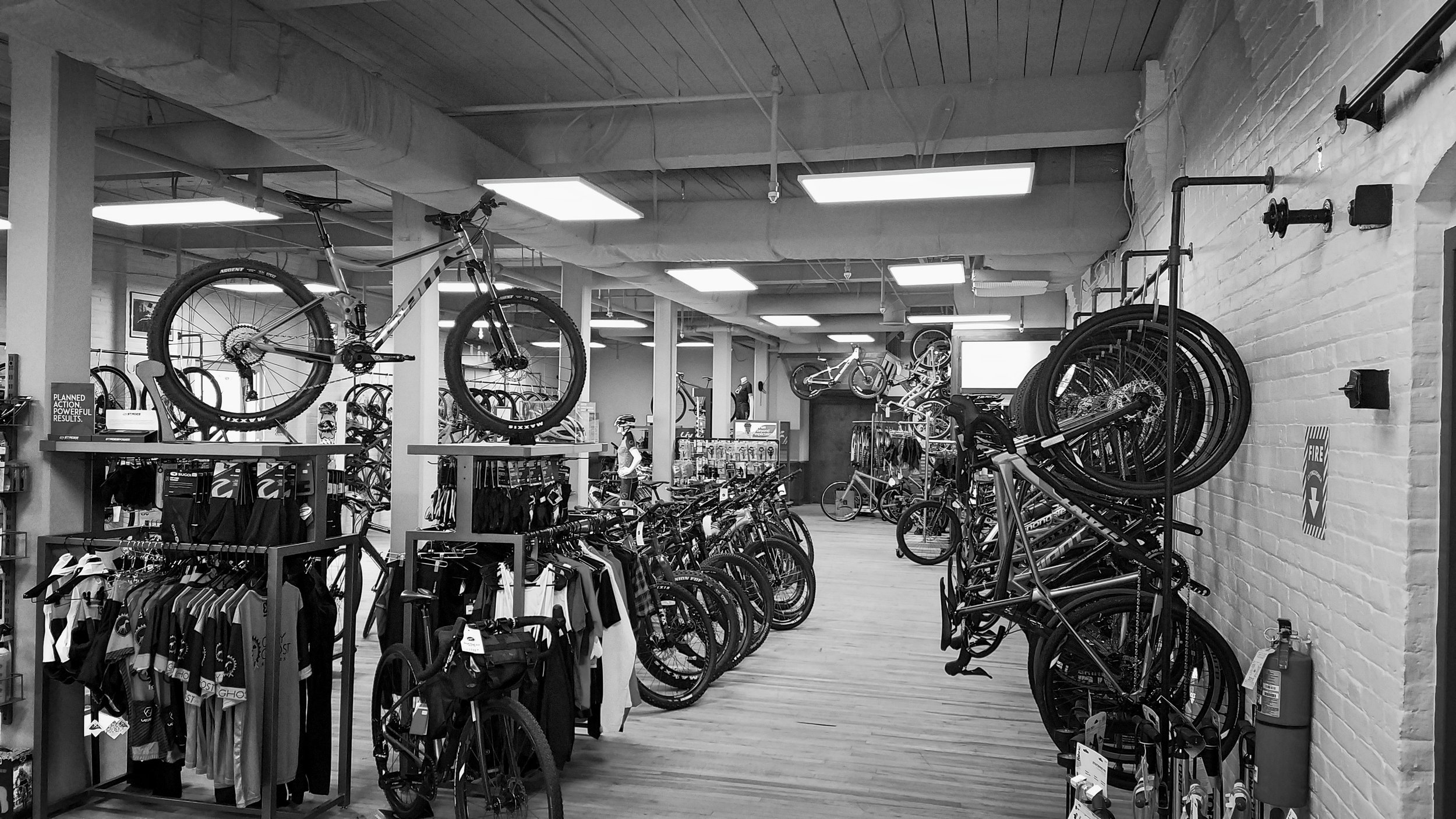 grey ghost bicycles expert bike fitting sales and service. giant, cannondale, niner, k. bedford customs