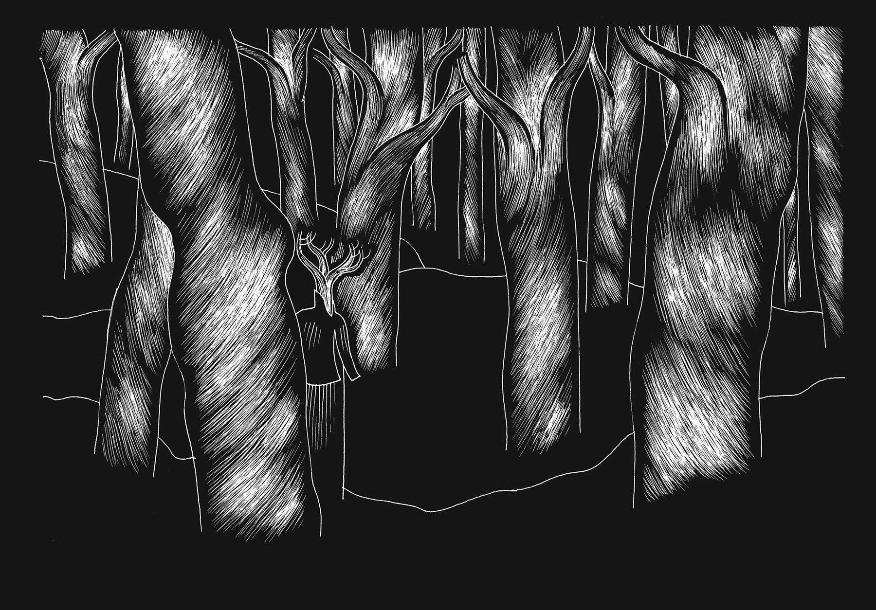 davidm-arboreal-web_expanded-2.jpg