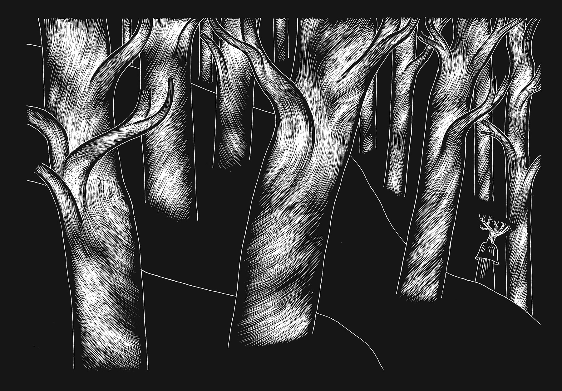 davidm-arboreal-web_expanded-4.jpg