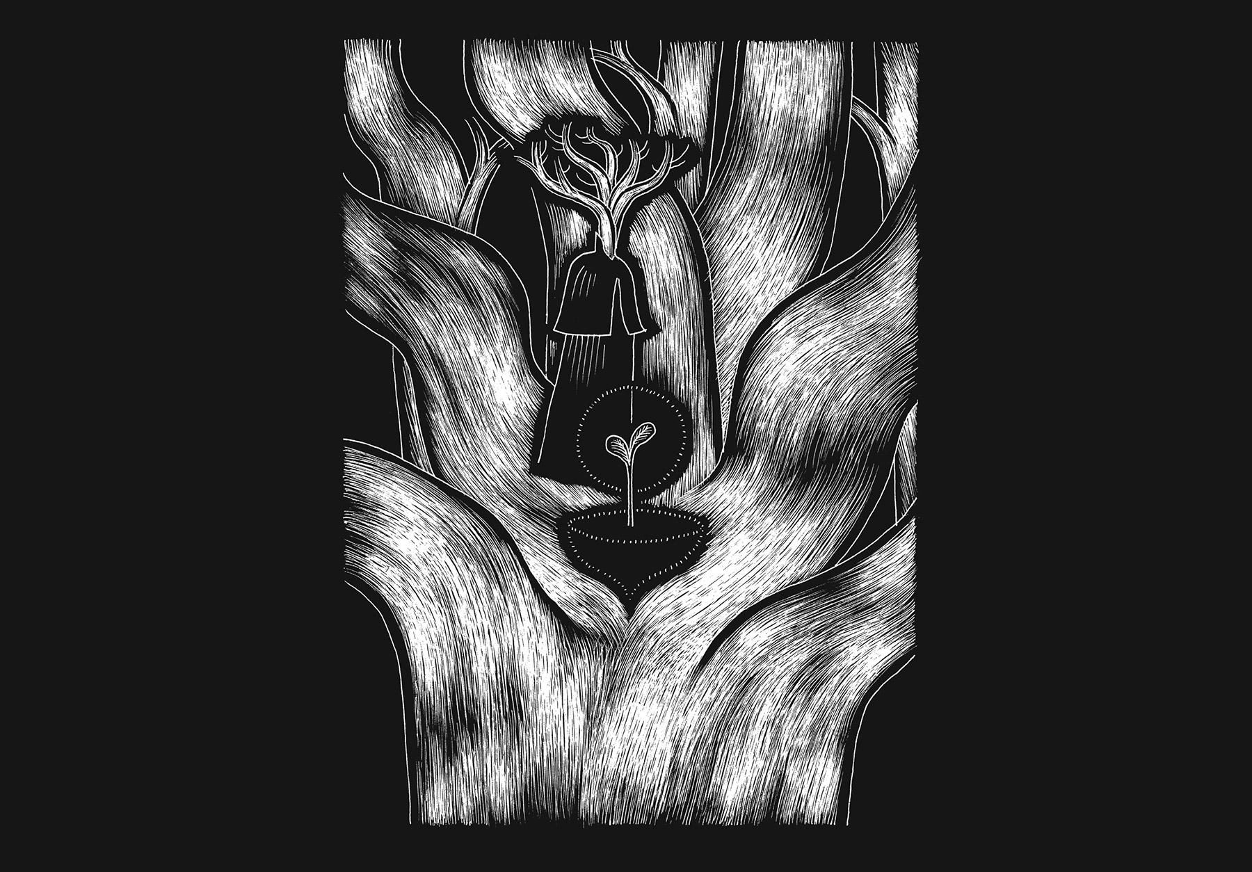 davidm-arboreal-web_expanded-9.jpg
