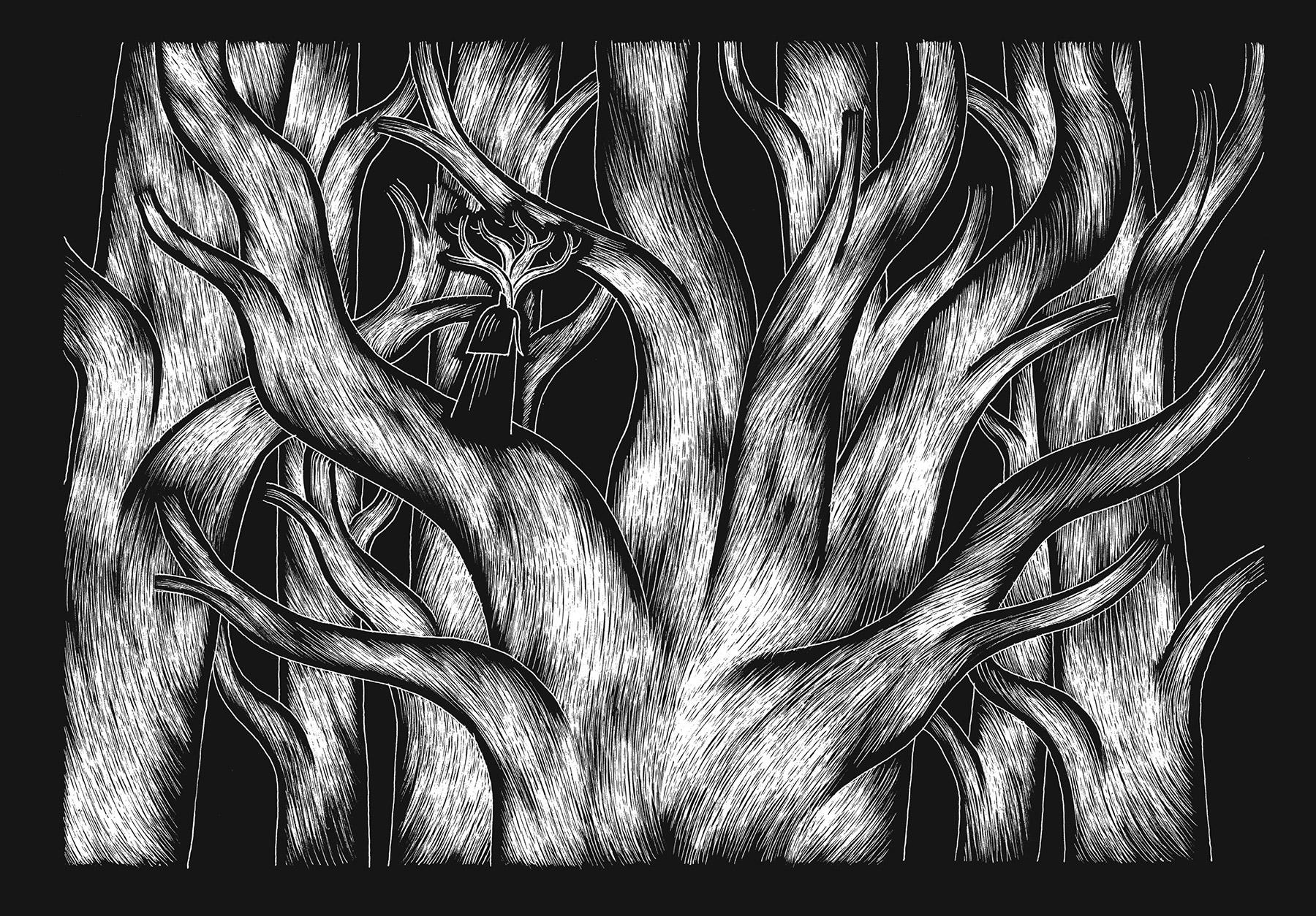 davidm-arboreal-web_expanded-8.jpg
