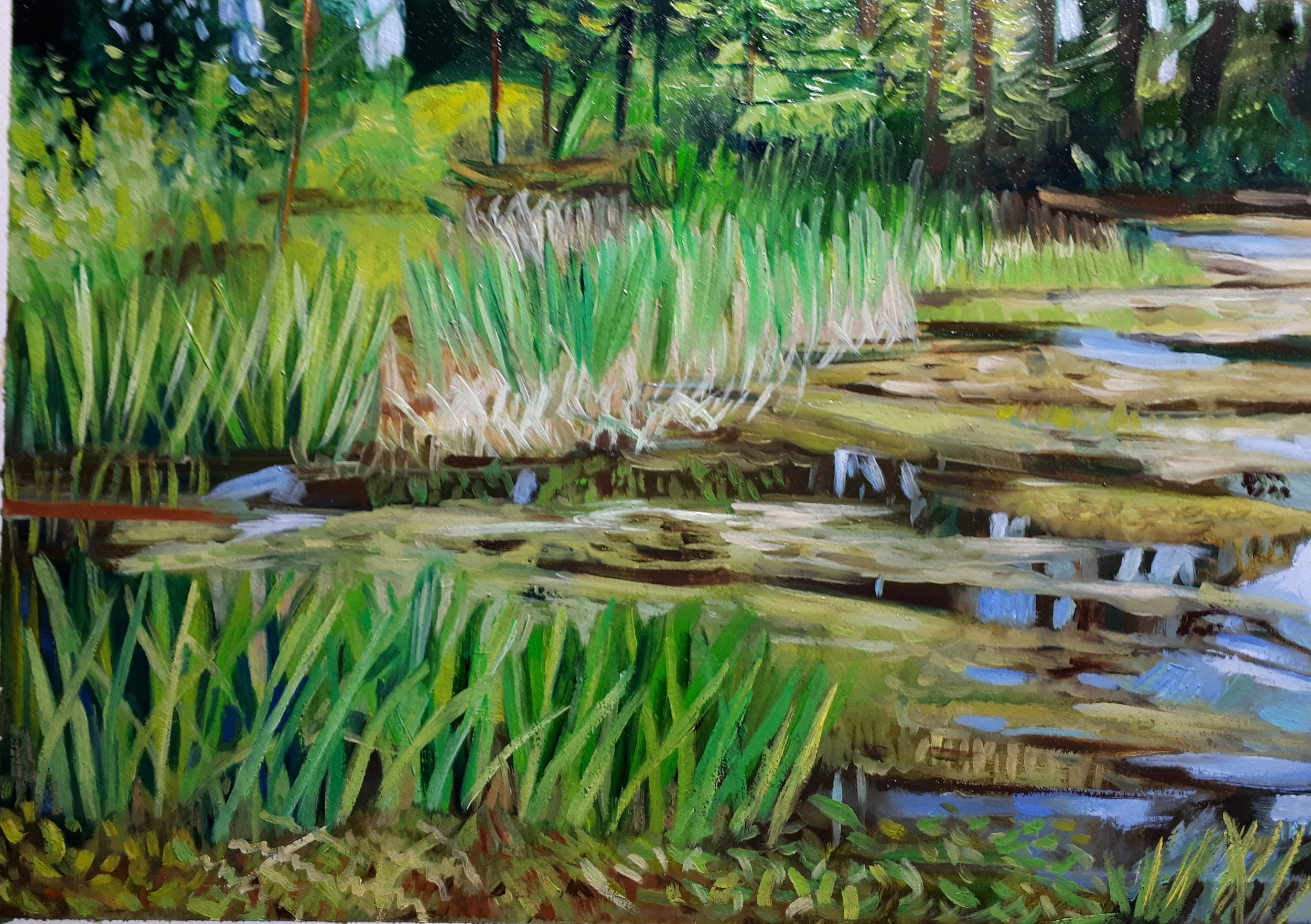 """""""Marsh"""": oil on paper 9 x 12"""" ( 11 x 14 with white mat)"""