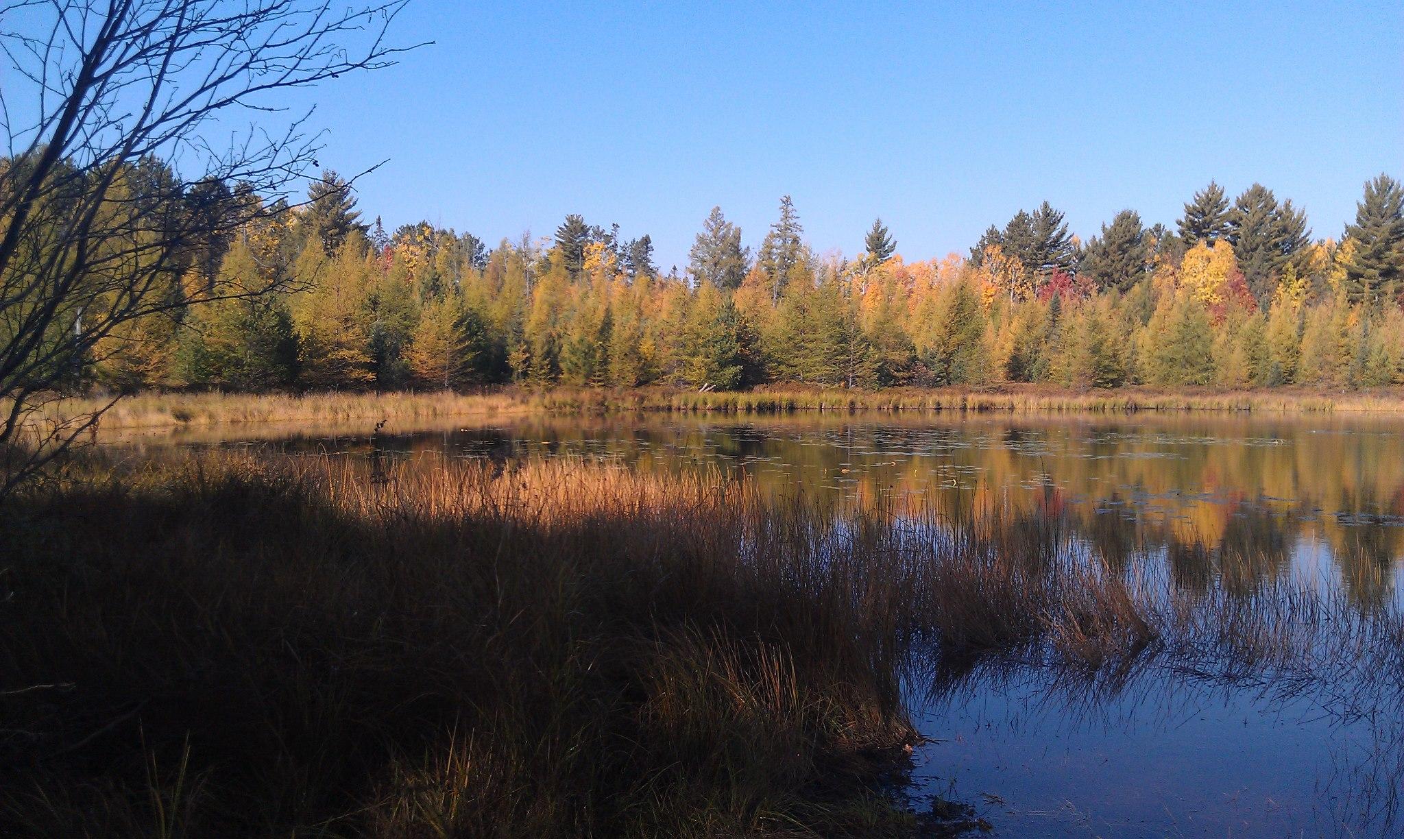 emily lake1.jpg
