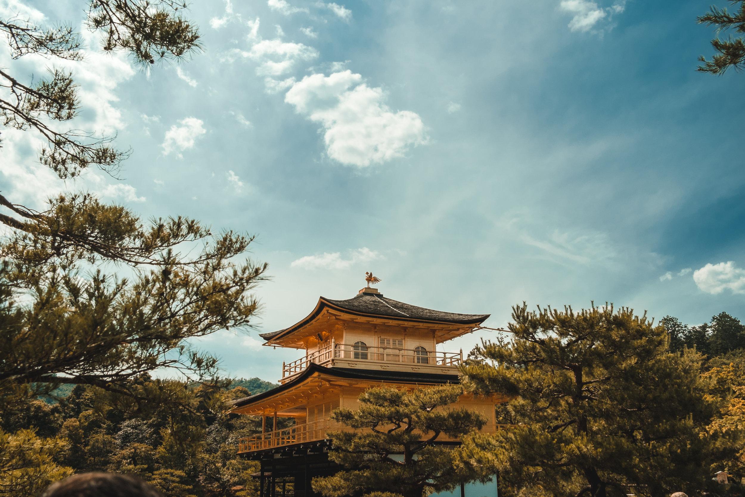 KyotoJapan_2018_AdamDillon_DSCF9952.jpg