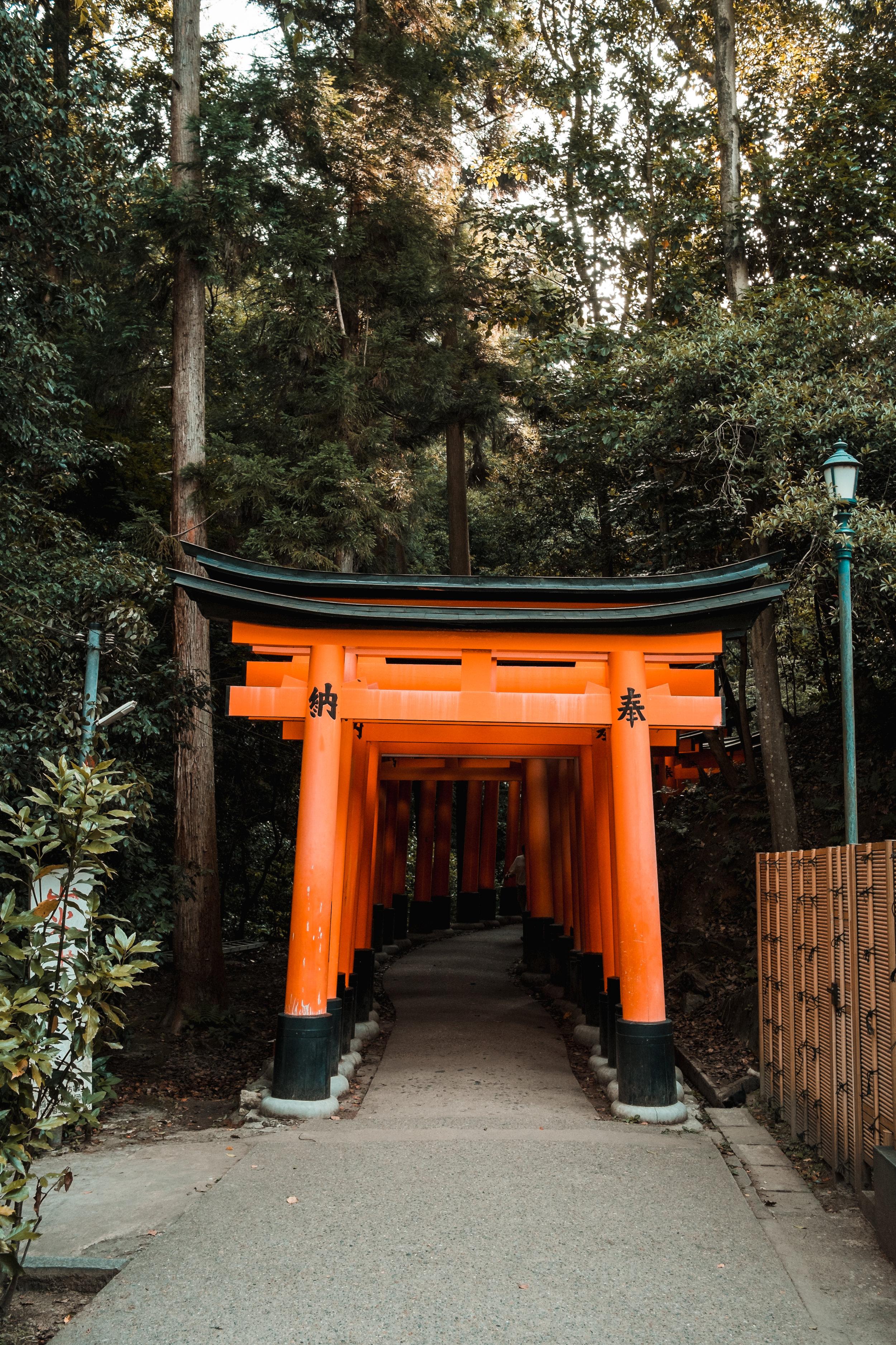 KyotoJapan_2018_AdamDillon_DSCF0047.jpg