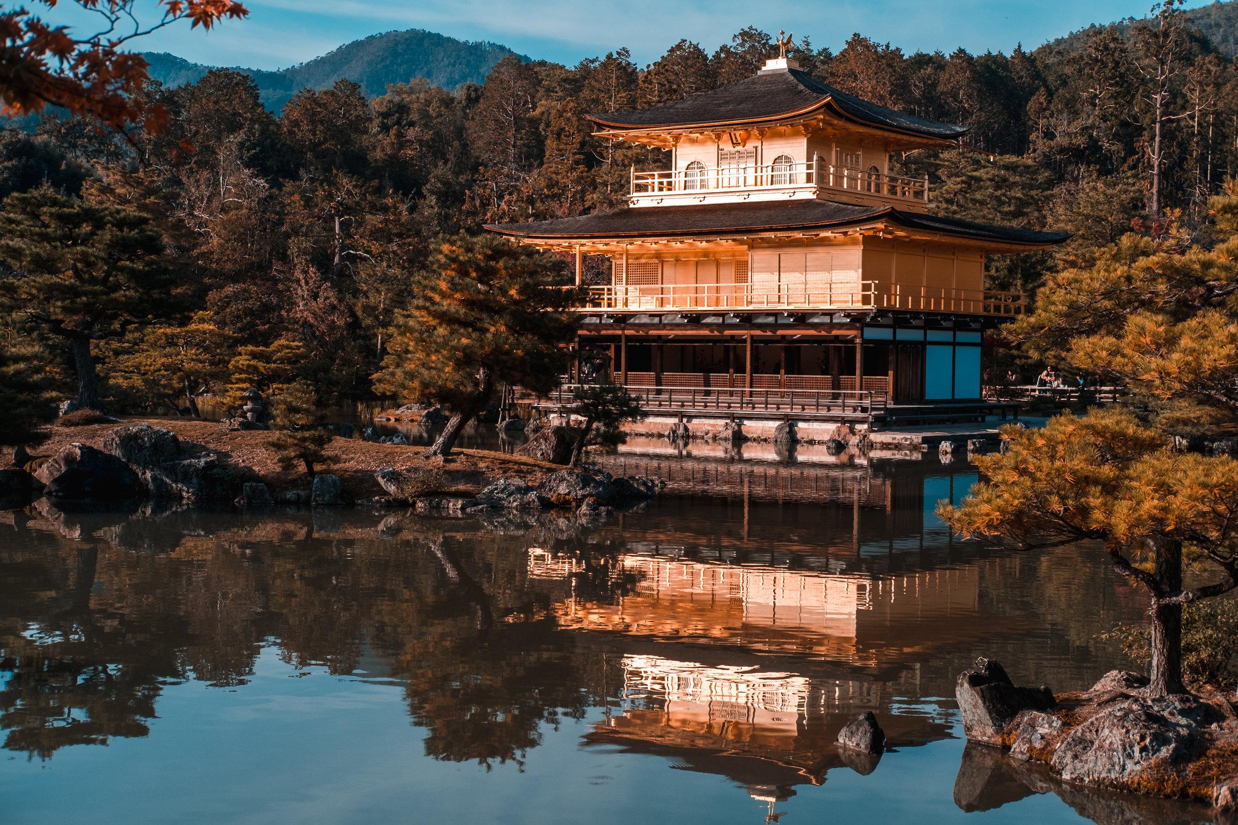 Kyoto_Nov_2018_AdamDillon_DSCF1320.jpg