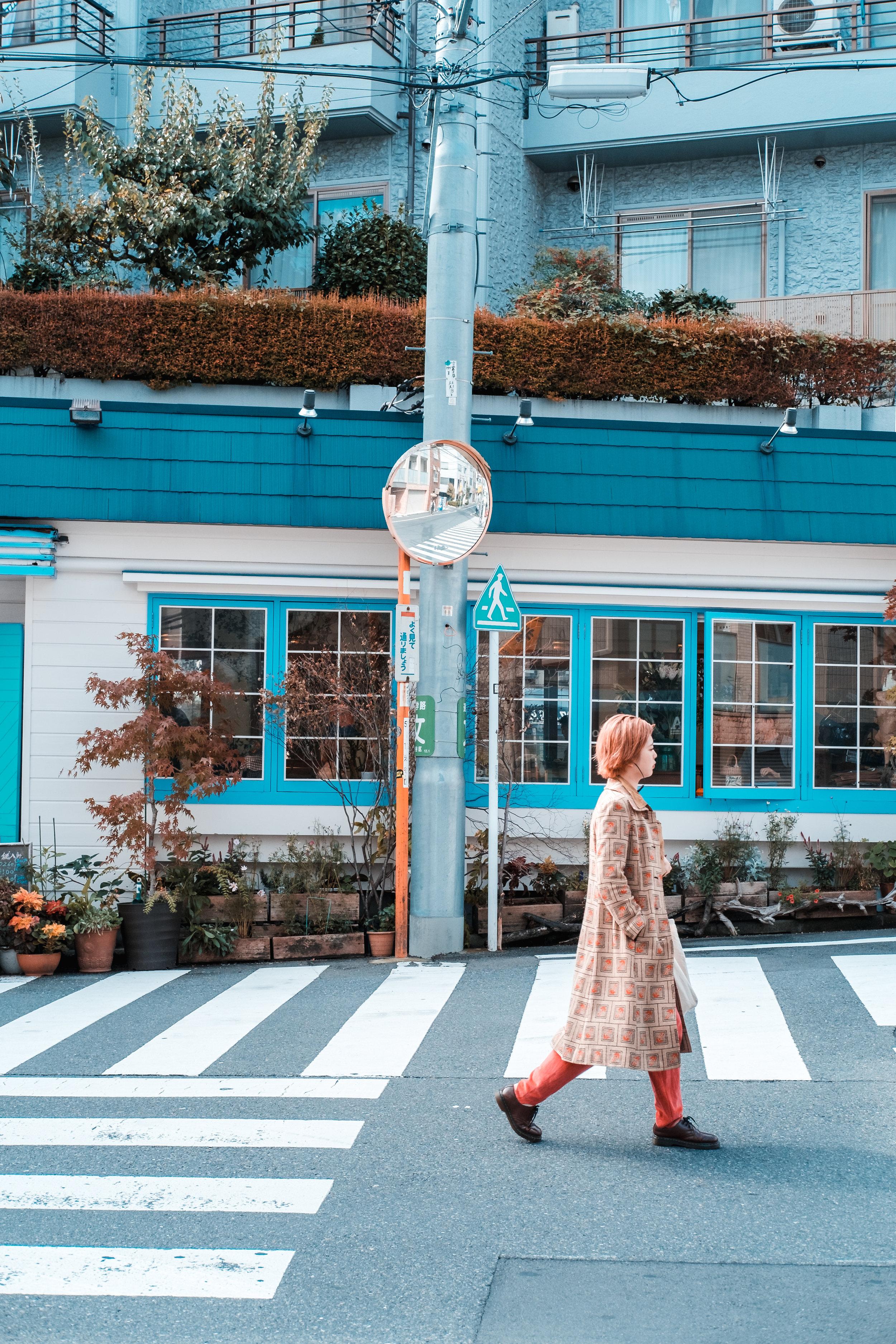 Tokyo_Nov_2018_AdamDillon_DSCF1113.jpg