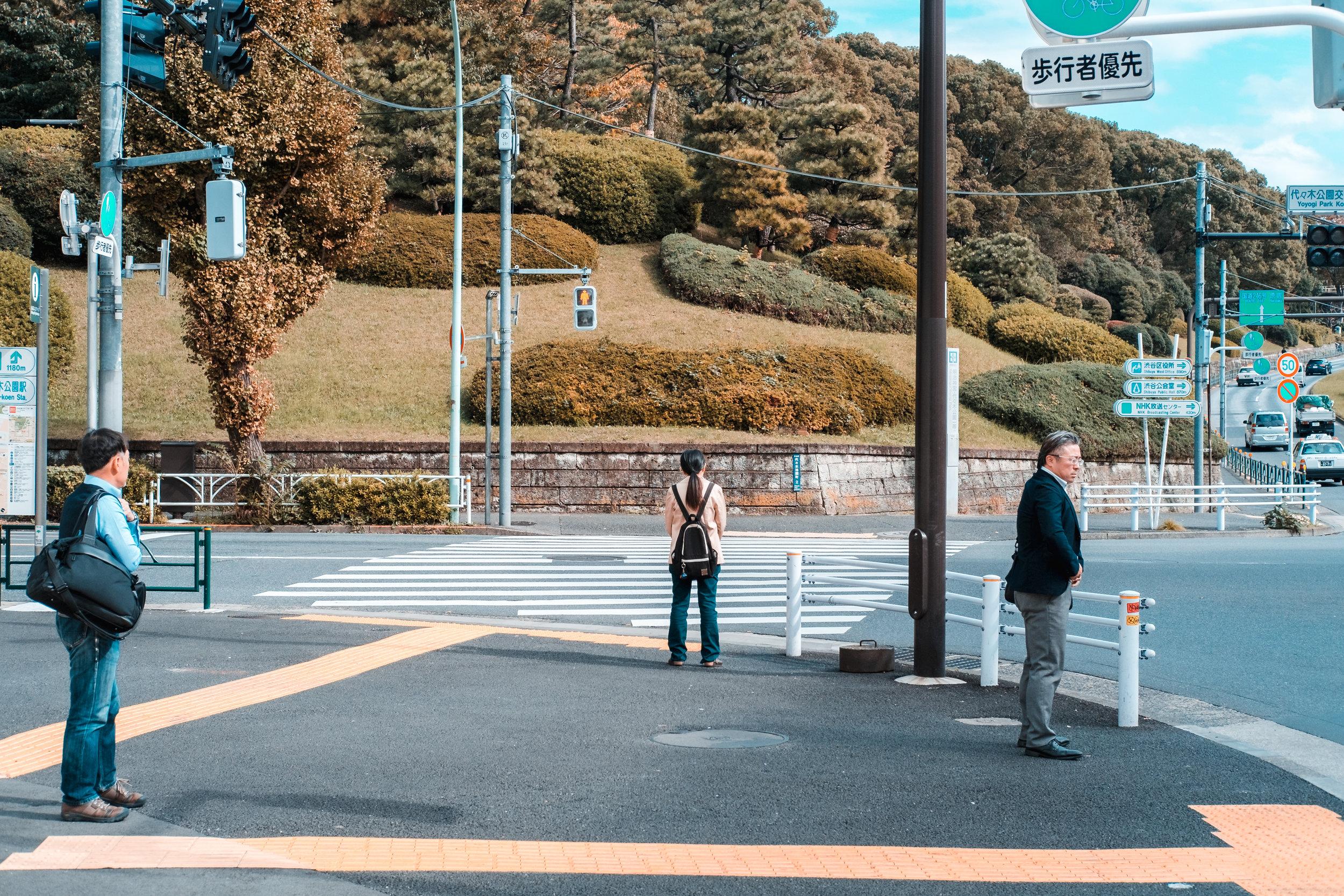 Tokyo_Nov_2018_AdamDillon_DSCF1128.jpg