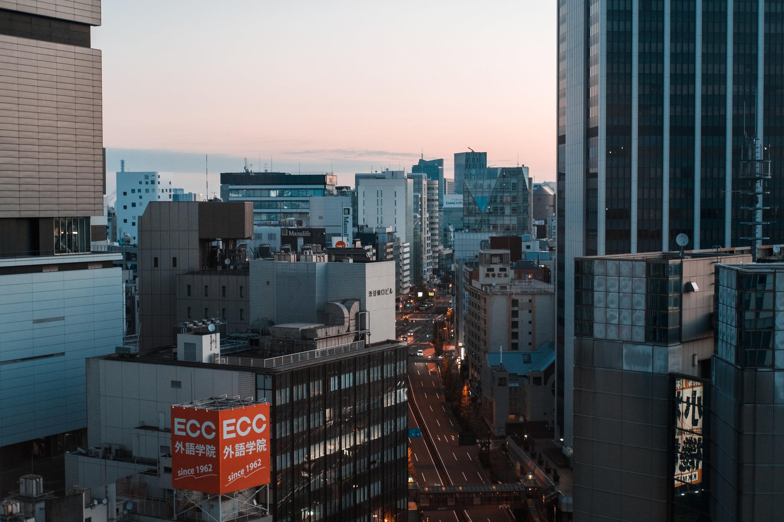 Tokyo_Nov_2018_AdamDillon_DSCF0846.jpg