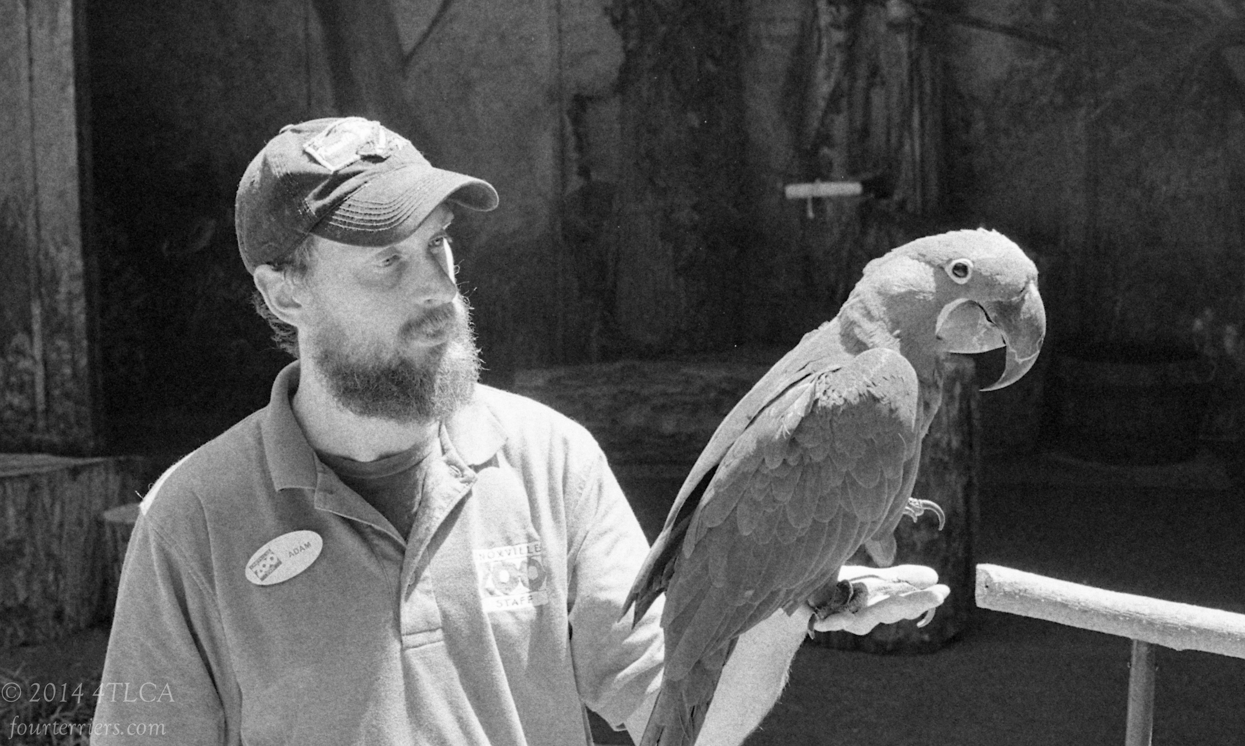 Parrot Master - Knoxville Zoo