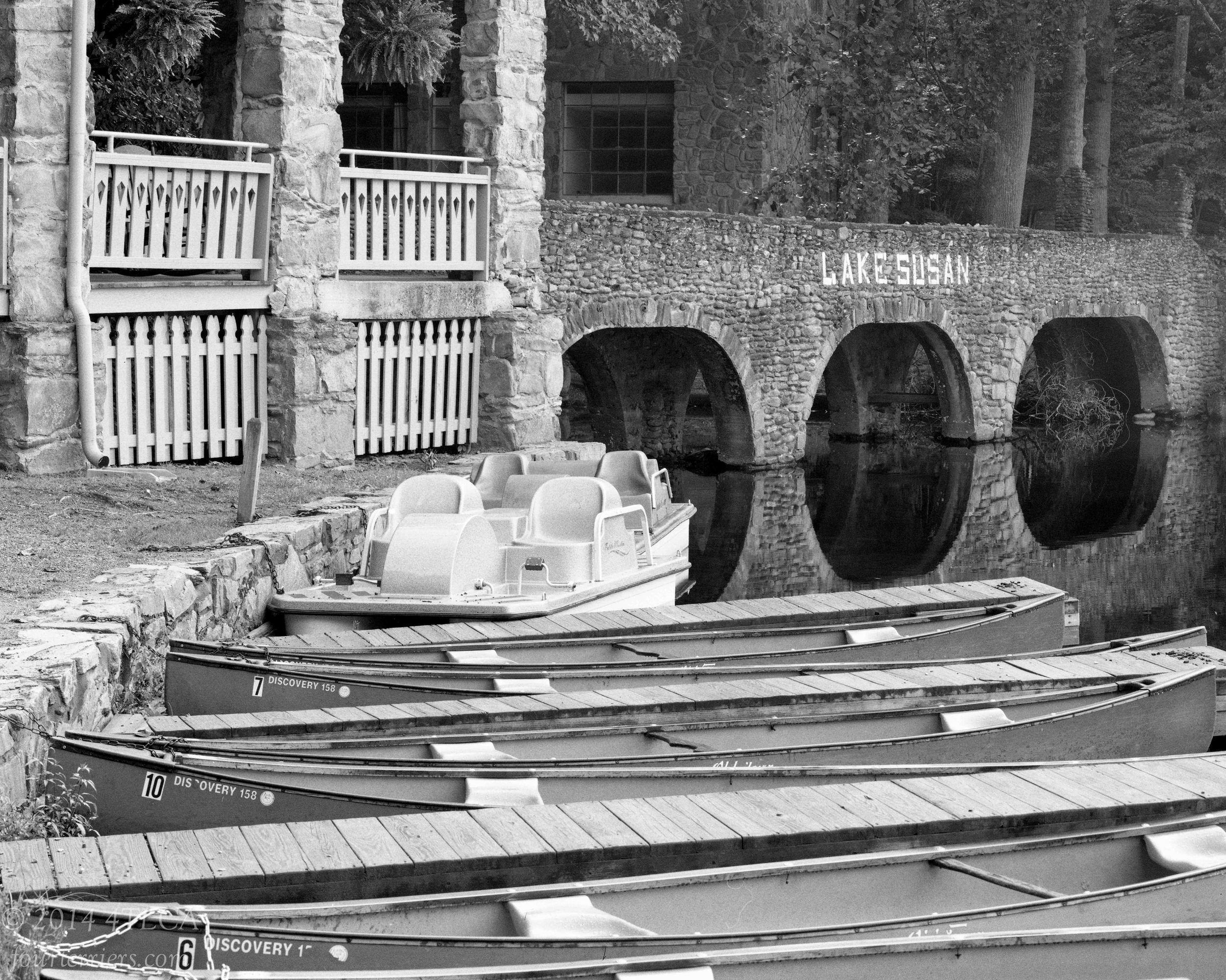 Lake Susan Bridge