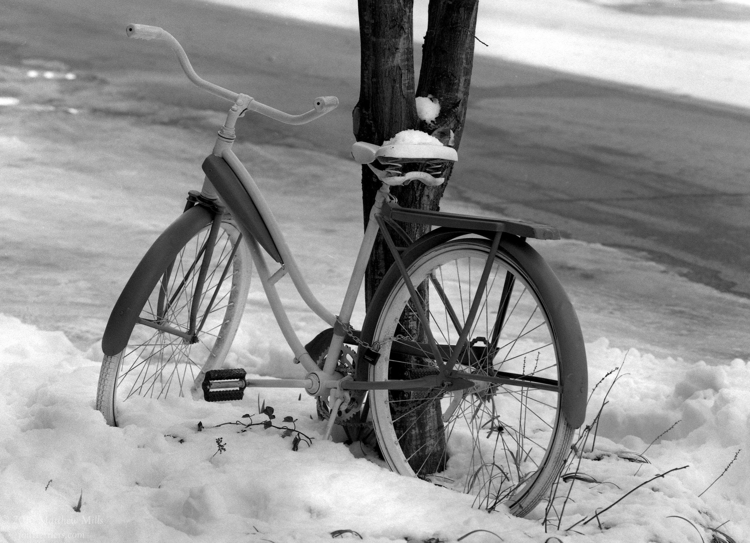 Bike - 2016
