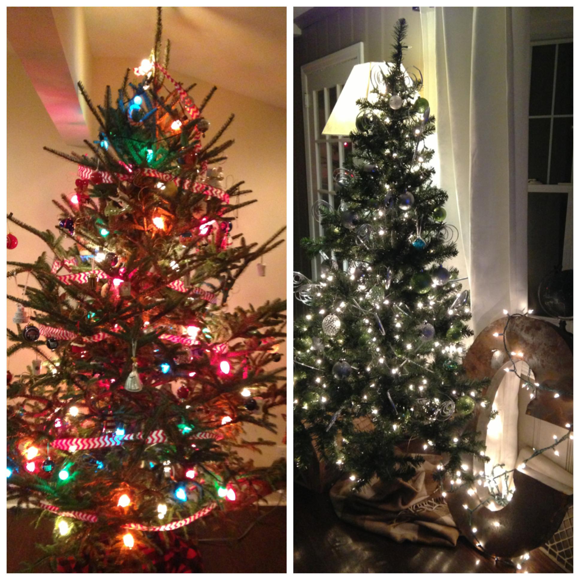 Dueling Christmas Trees.jpg