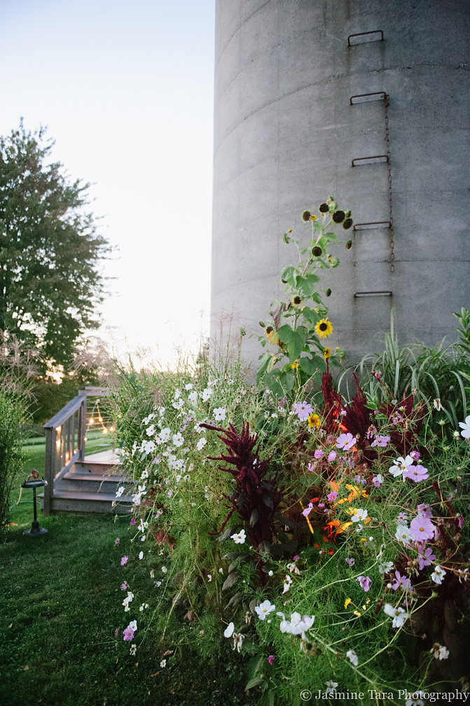 The wild flowers at Candlelight Farm were simply outrageous!