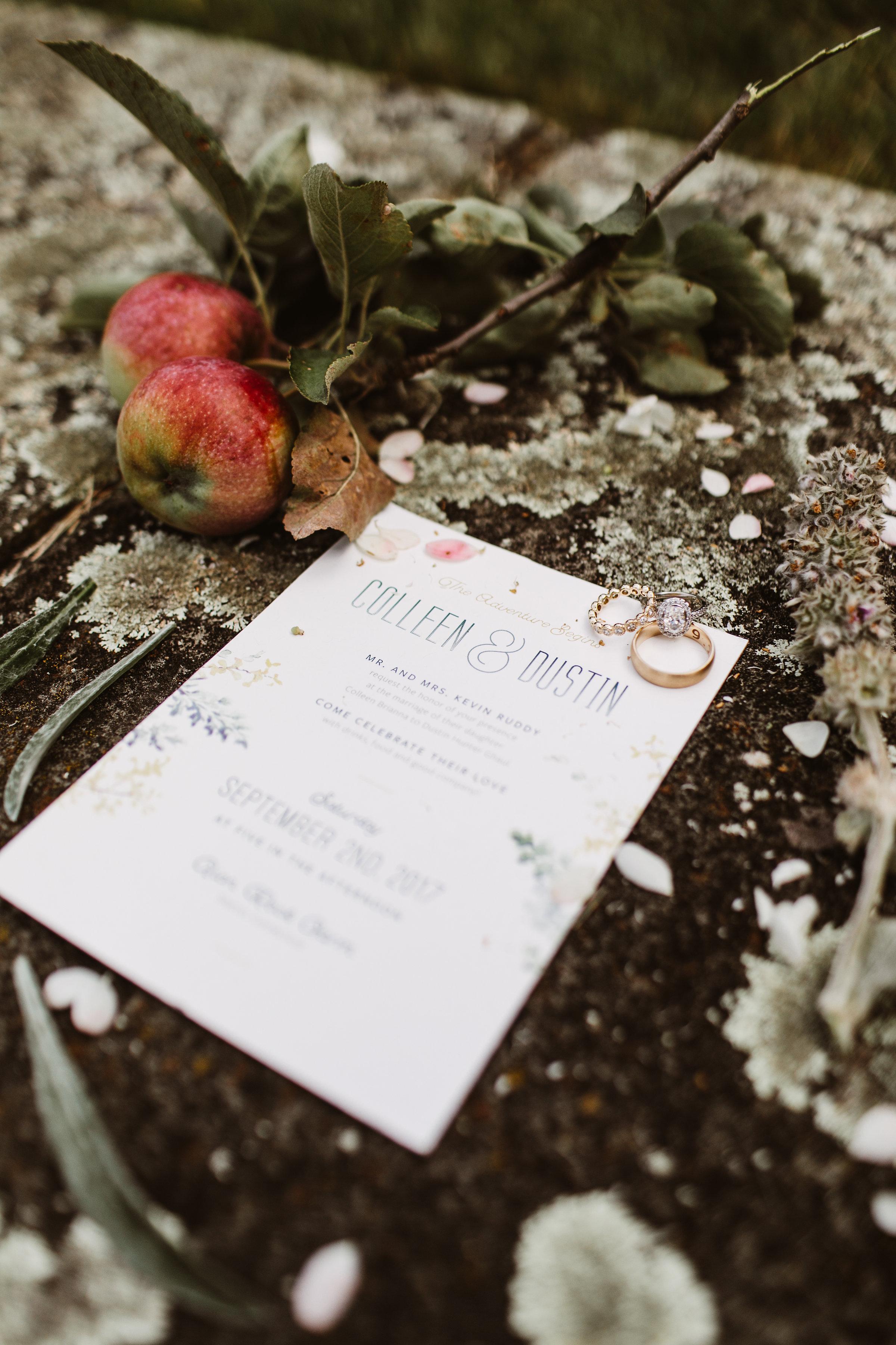 Philadelphia Philly Wedding Planner Event Planner_003.jpg