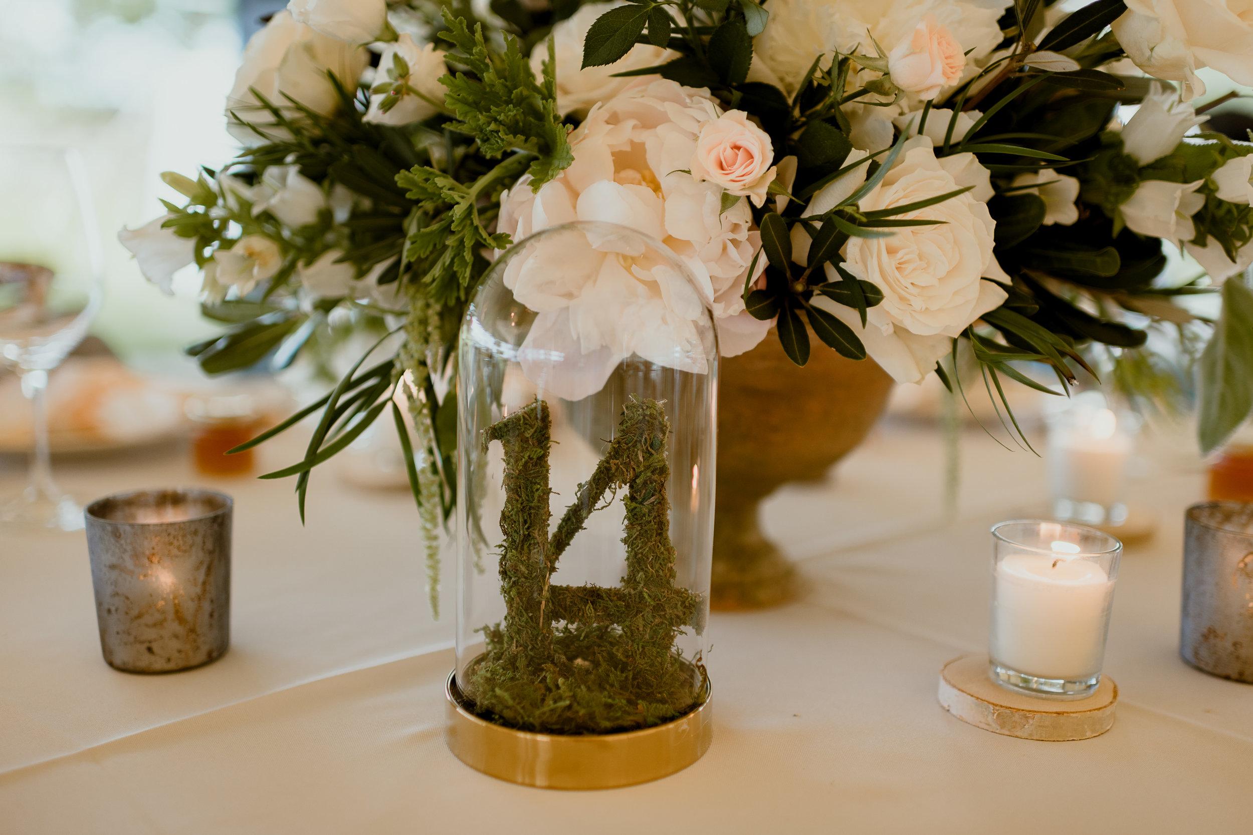 Green & White Wedding Jonathon Edwards Vineyard Wedding0-393.jpg