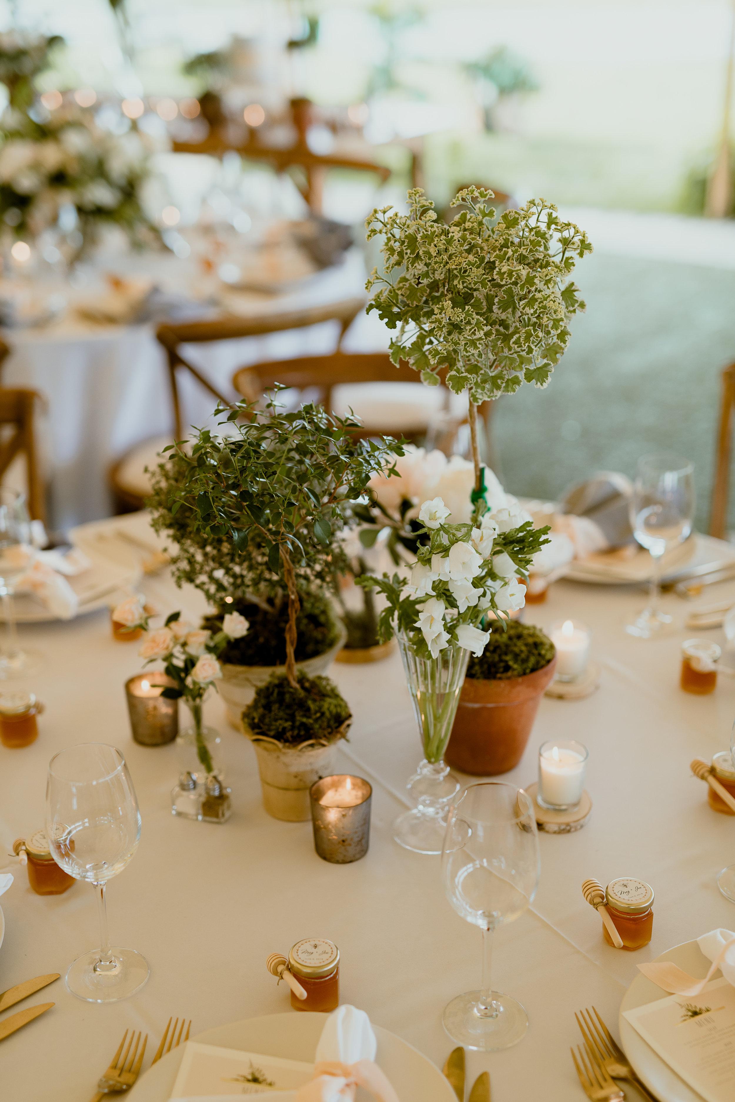 Green & White Wedding Jonathon Edwards Vineyard Wedding0-392.jpg