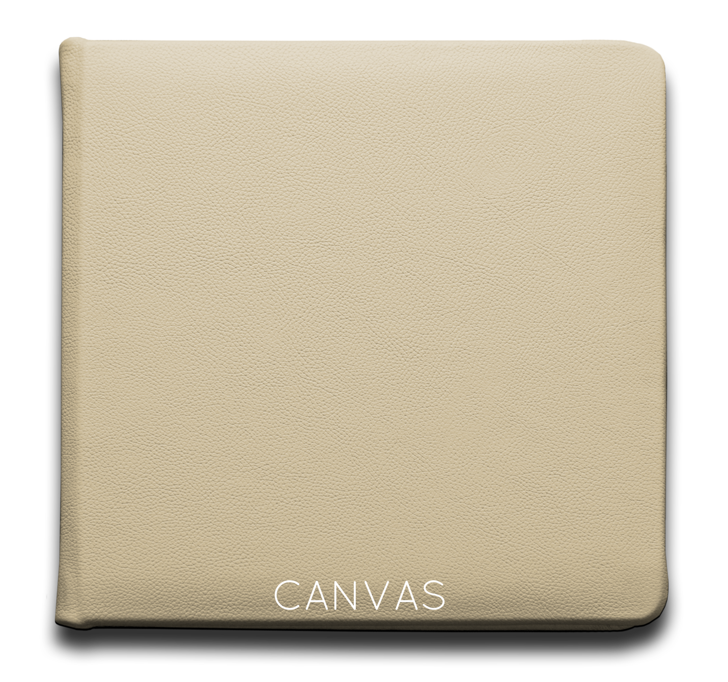 Canvas - Leather