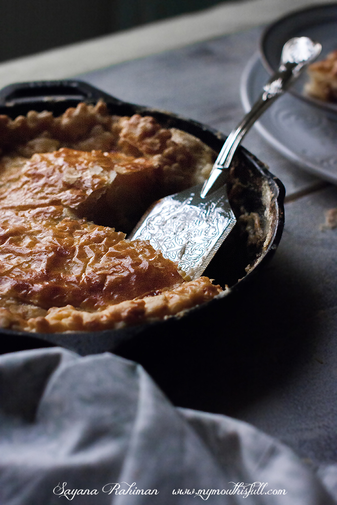 Chicken_Pot_Pie_001