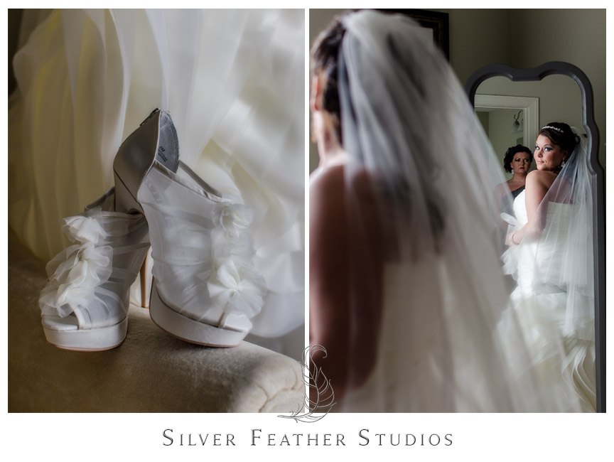 Bride in gown - Holly Springs Wedding Photographer