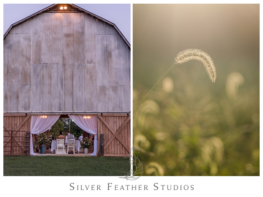 Rustic pink and aqua Barn Wedding at Starlight Meadow.   © Silver Feather Studios, Burlington, NC Wedding Photography