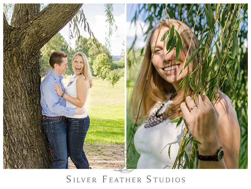 Lovely willow oak tree atGranddad's AppleOrchard in Hendersonville, NC. © Silver Feather Studios, Burlington, NC Wedding Photography & Videography