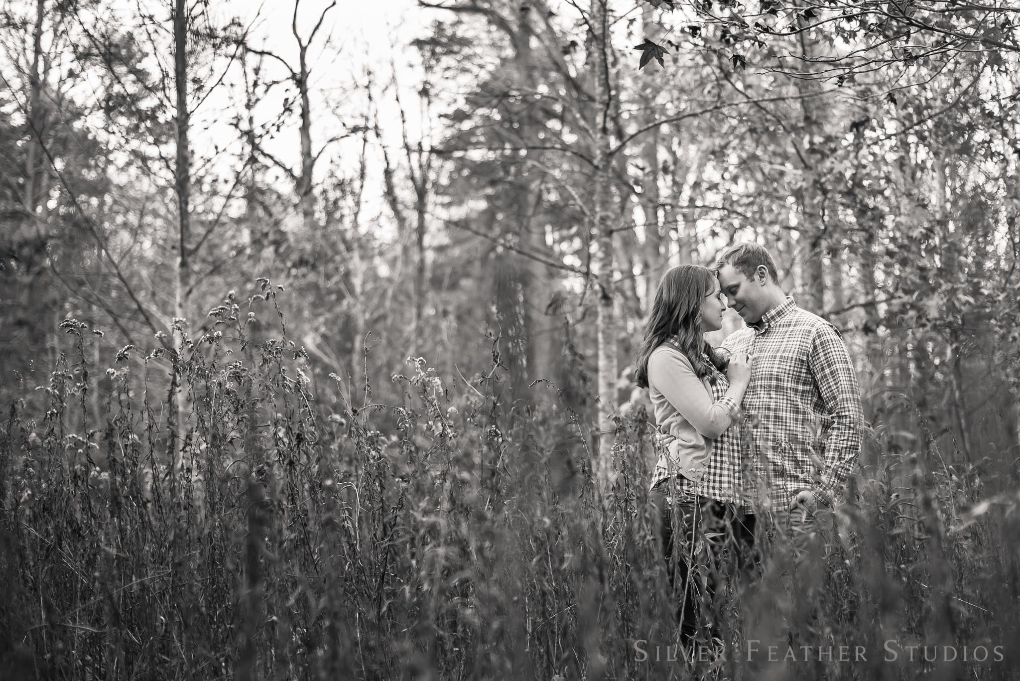 beautiful engagement photo in a field with hannah and will at guilford courthouse national park. © silver feather studios, wedding photographer in burlington nc.