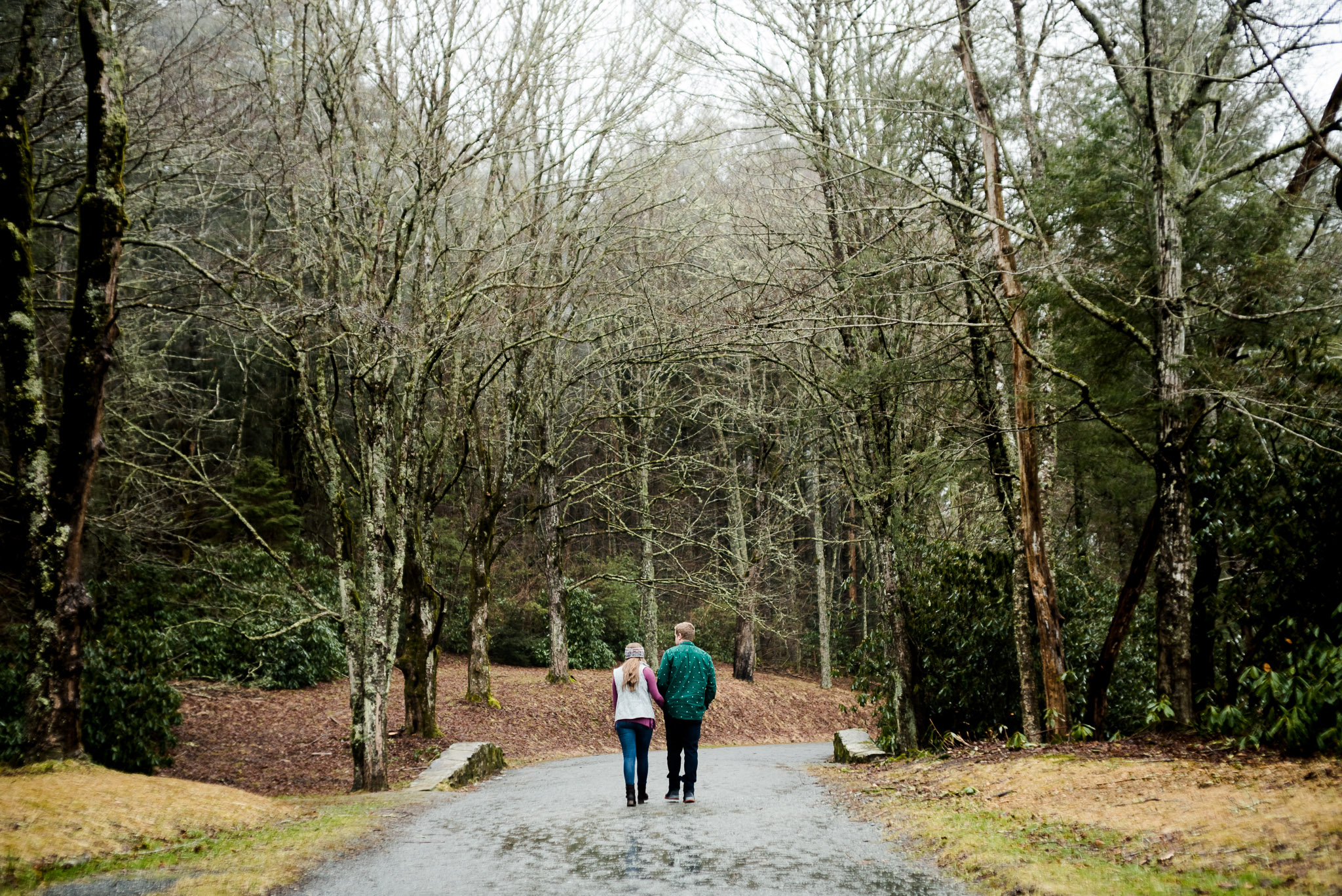 foggy park engagement session in blowing rock, nc