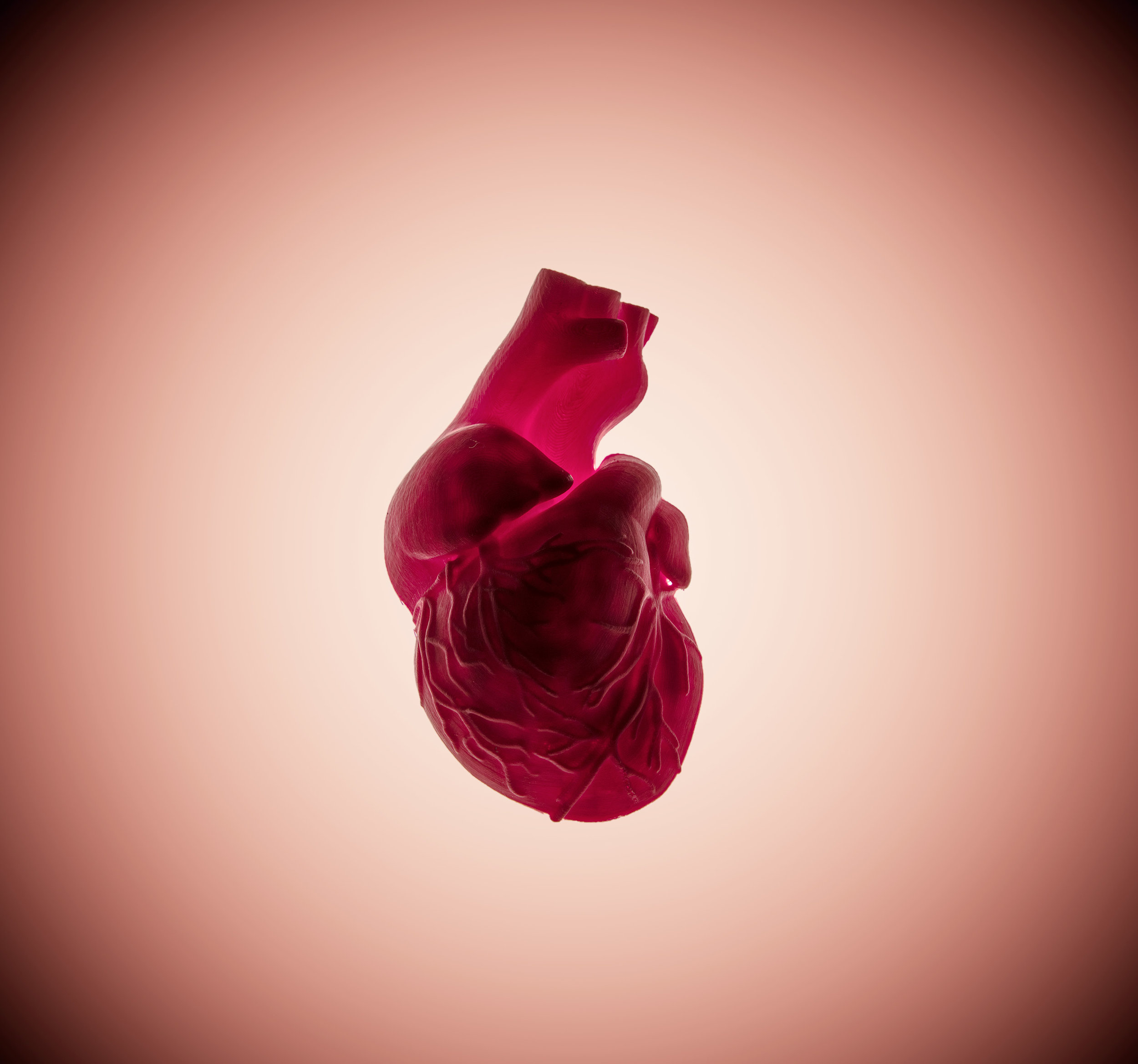 HEART2003a.jpg