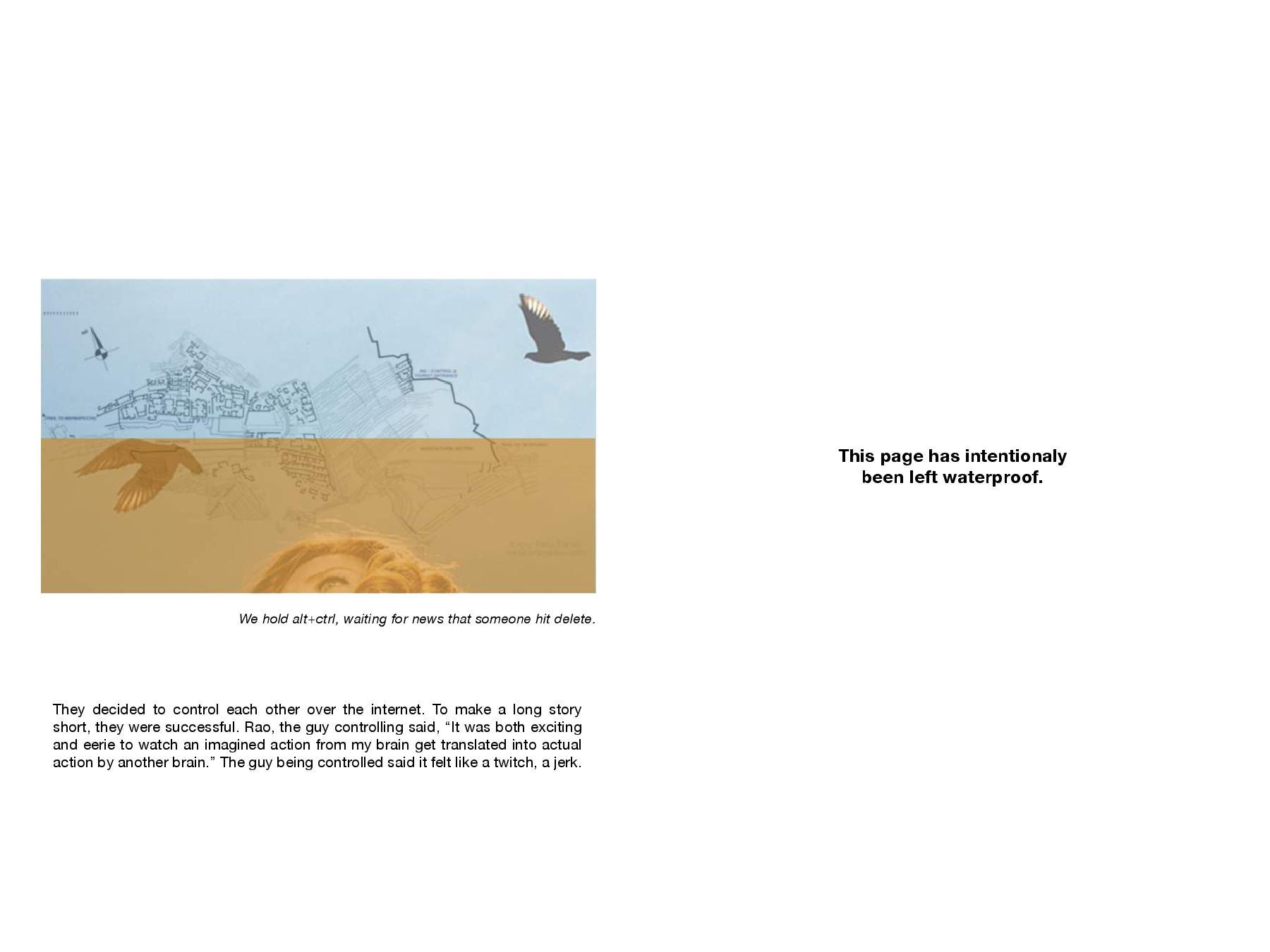GRIDLEAK bookCOVER.compressed-page-004.jpg