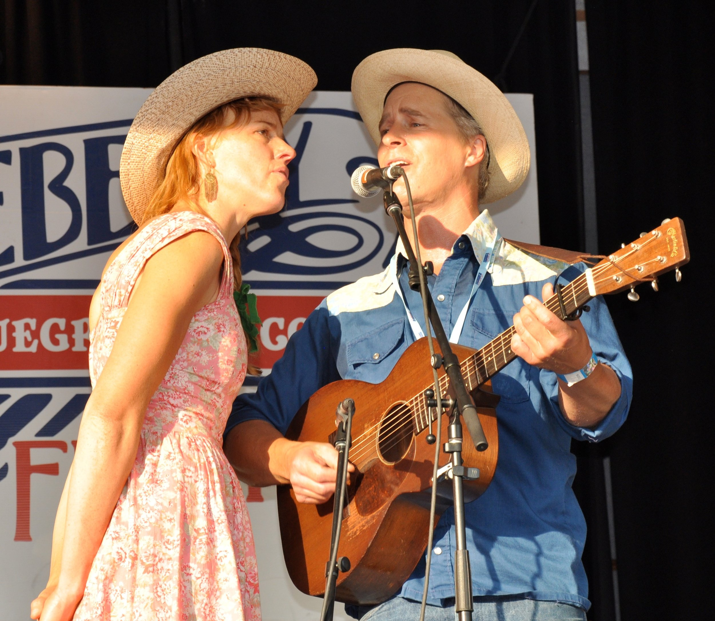 Blueberry Bluegrass Festival - Music