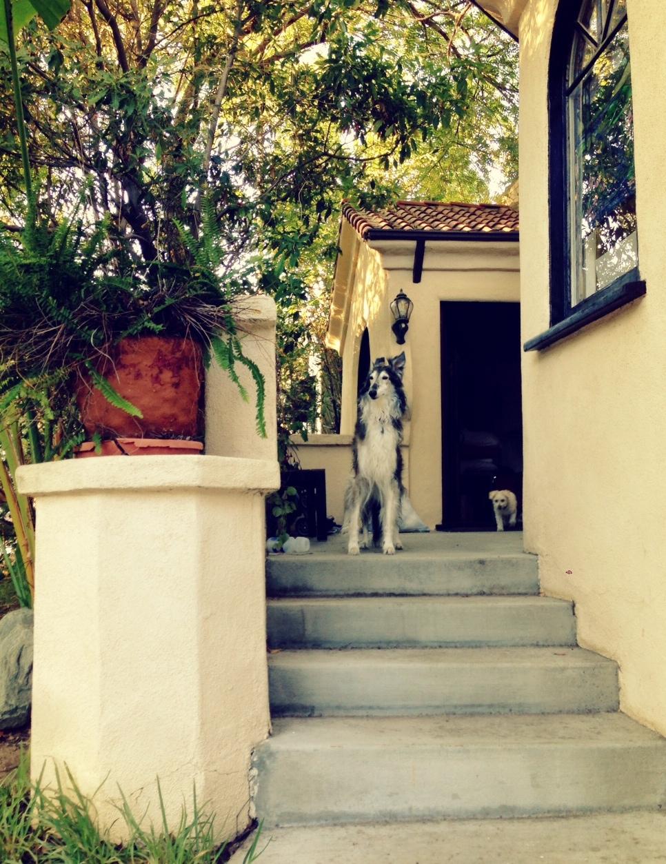 Our new LA home.