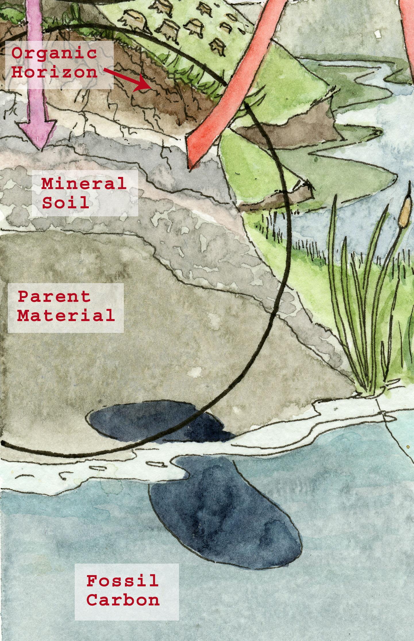 Soils Detail.jpg