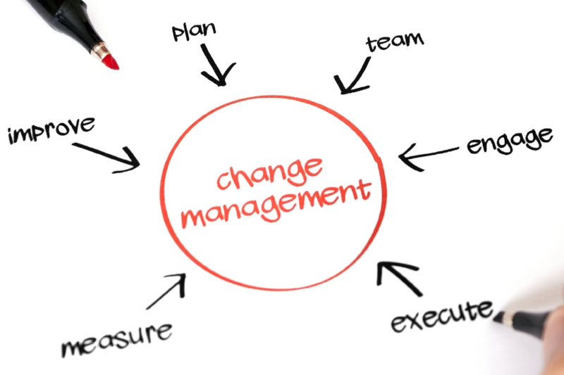 Measure, improve, plan, team, engage and execute all leading to change management