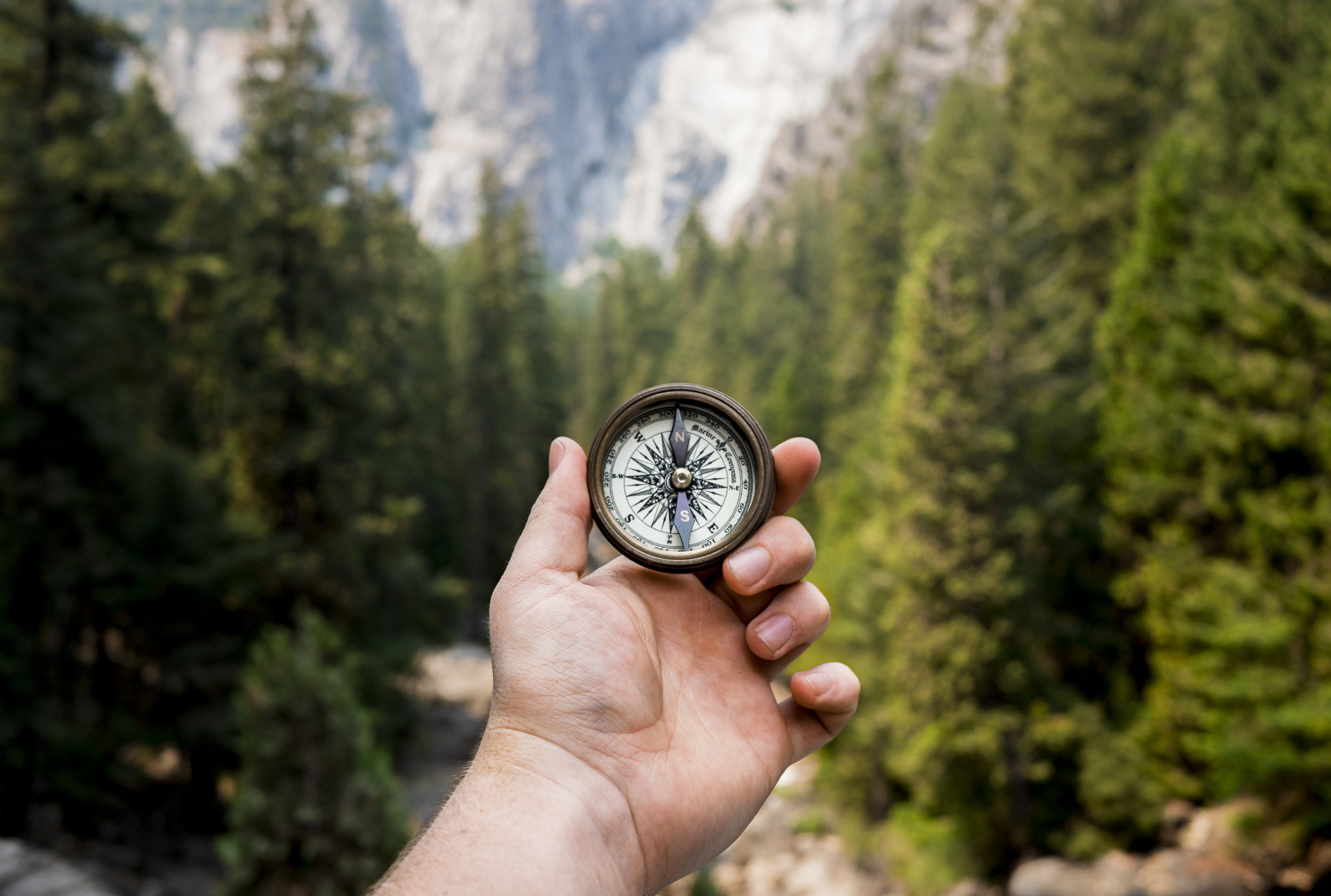 Looking at compass in a forest to determine North. The direction of any organisation needs to be shown by leadership and having a clearly defined direction.