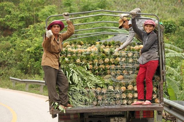 Pineapple people.jpg