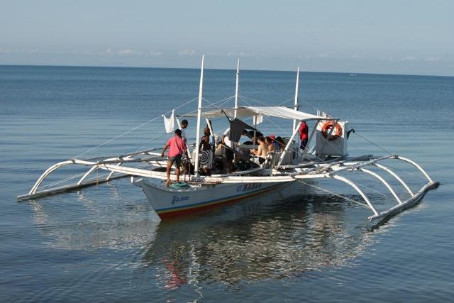 Whale sharking boat