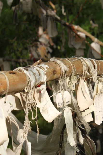 Wishing tree wishes.jpg