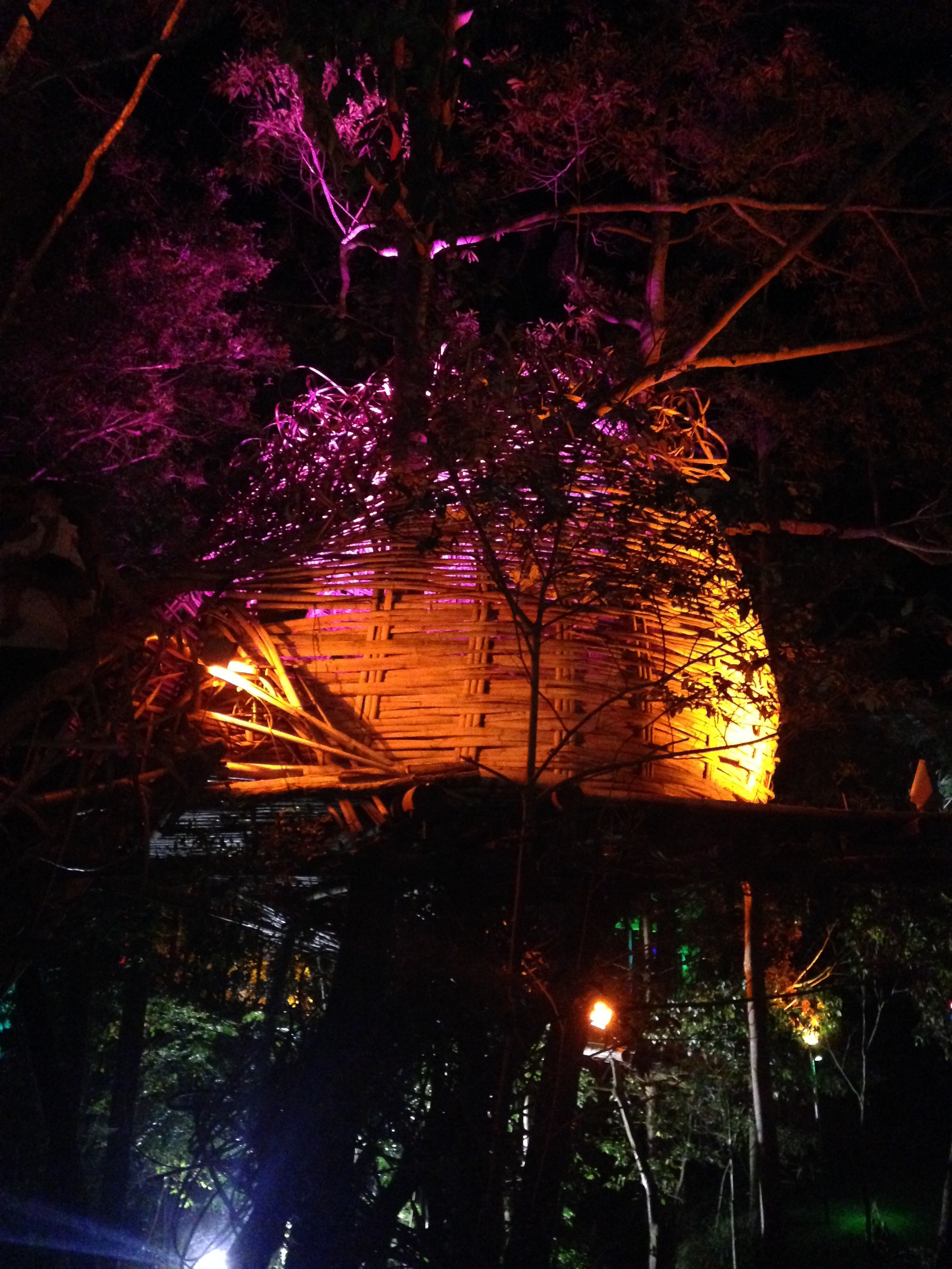 The magicl treehouse