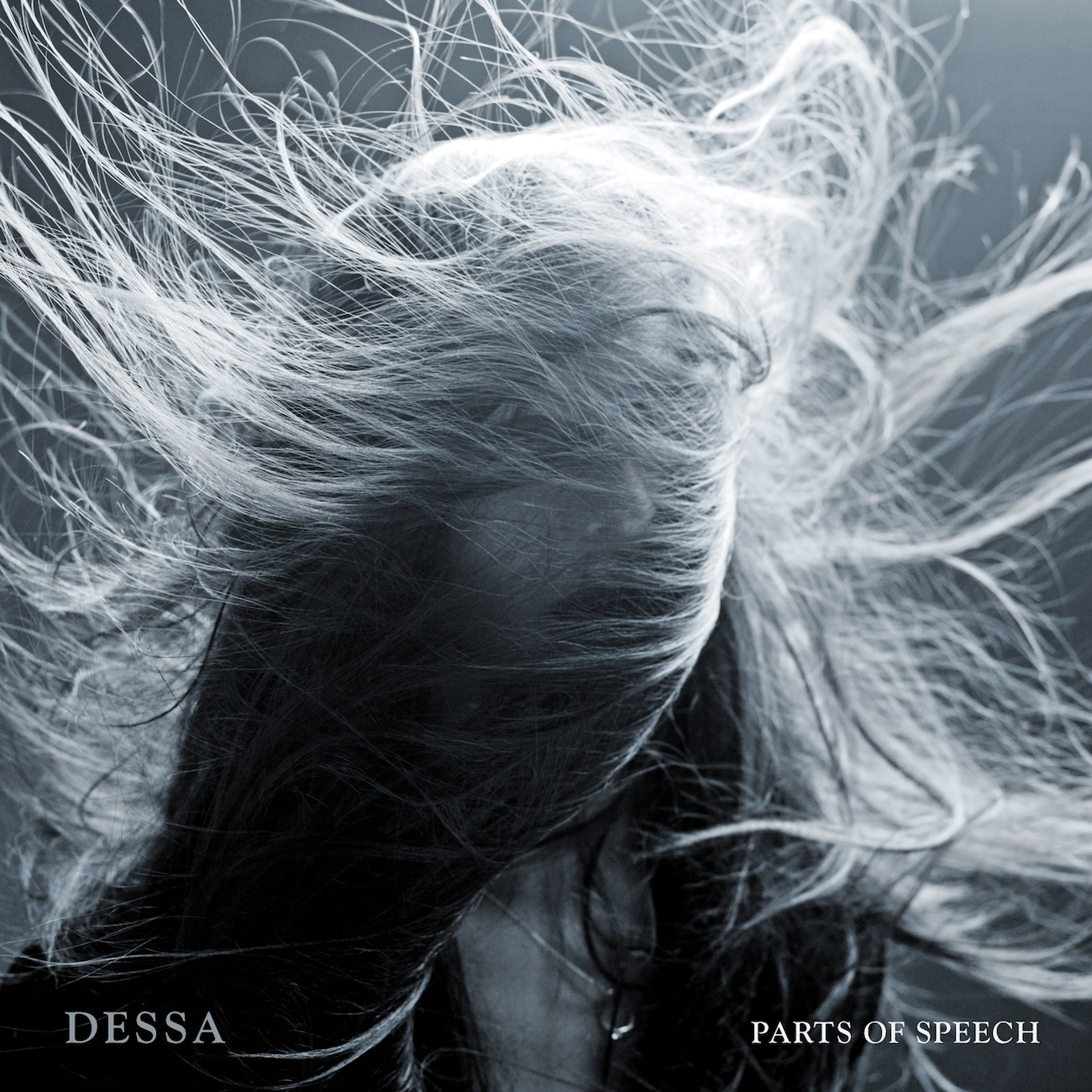 Dessa album art Parts of Speech doomtree
