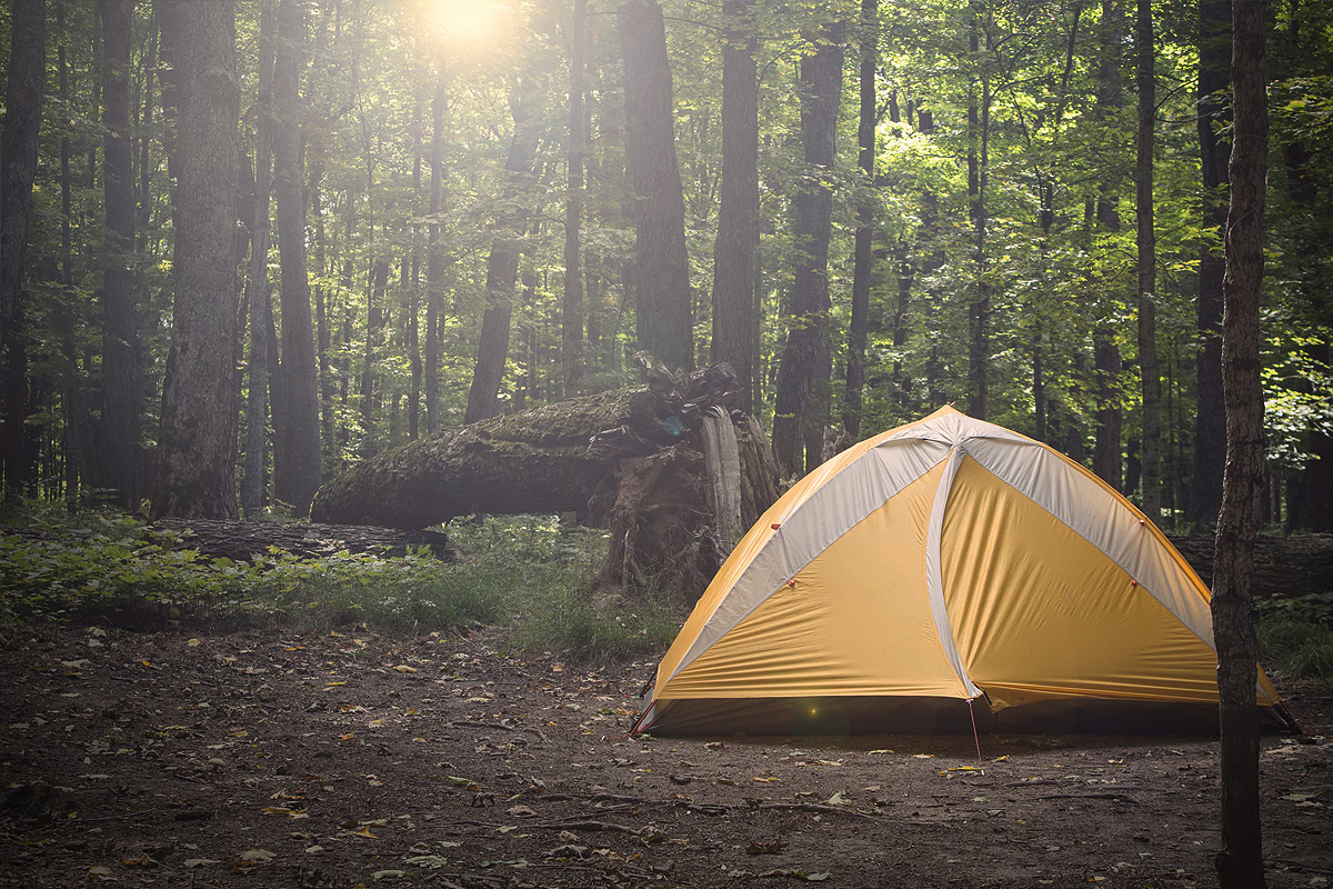 Travel and Camp on Durable Surfaces - When exploring your surroundings and setting up your picnic or overnight camp, seek out resilient types of terrain. Ideal durable surfaces include established trails and campsites, rock, gravel, dry grasses or snow.